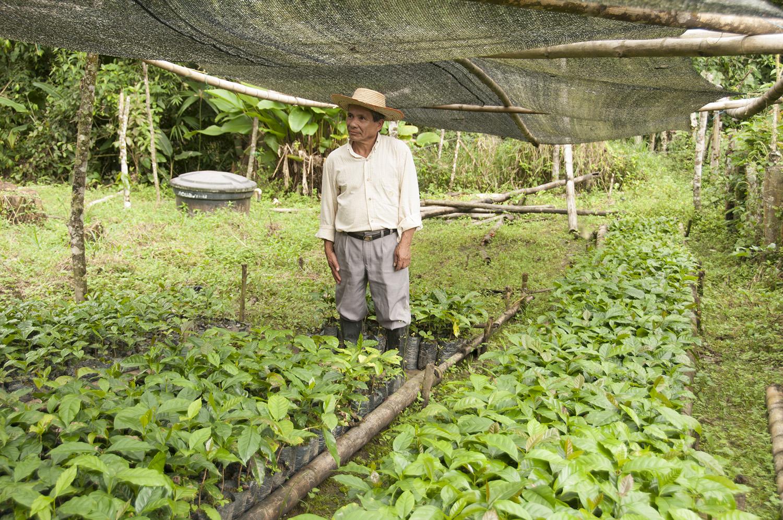 Colombian coffee sacks