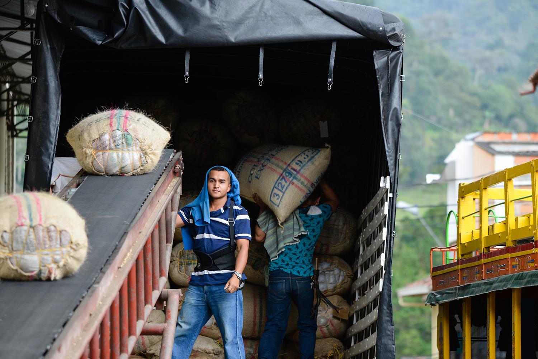 loading colombian coffee sacks