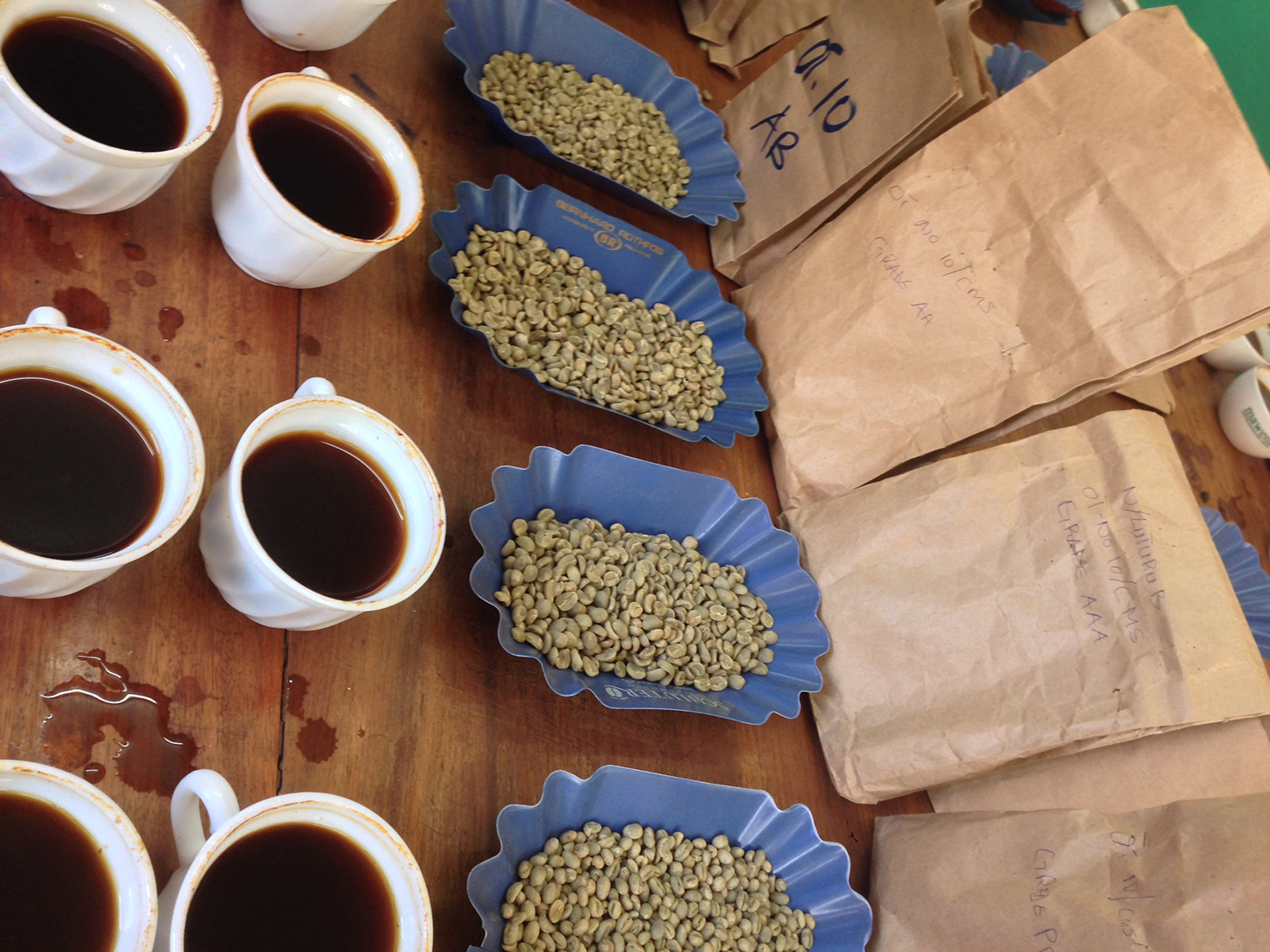 coffee cupping in Ethiopia