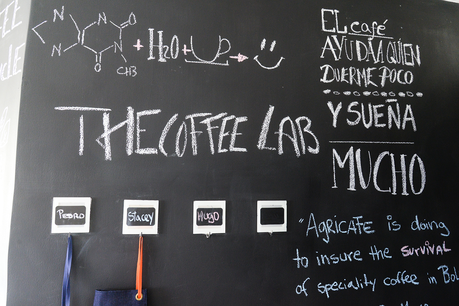 agricafe coffee lab in bolivia