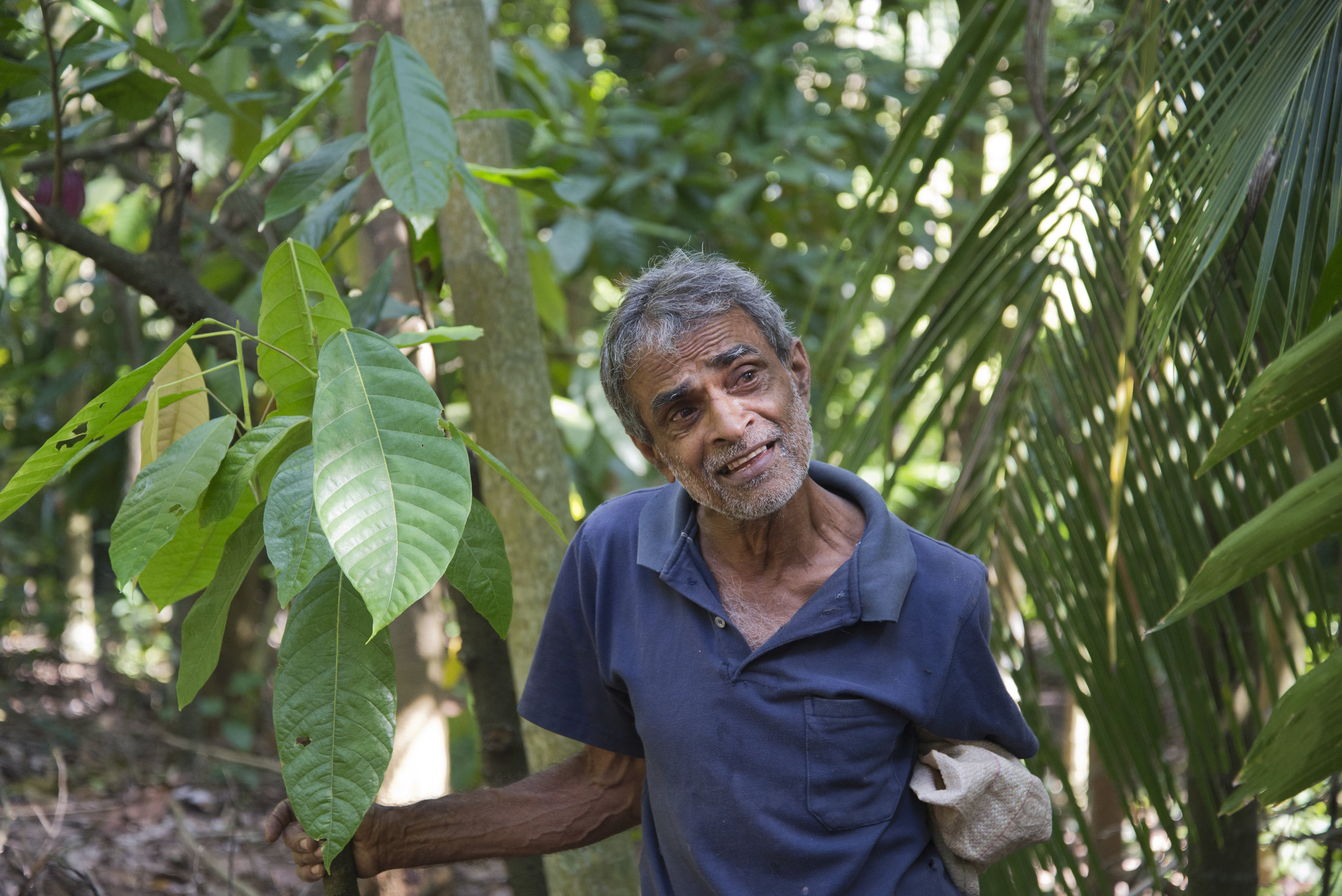 Dissanayake in his backyard spice garden.