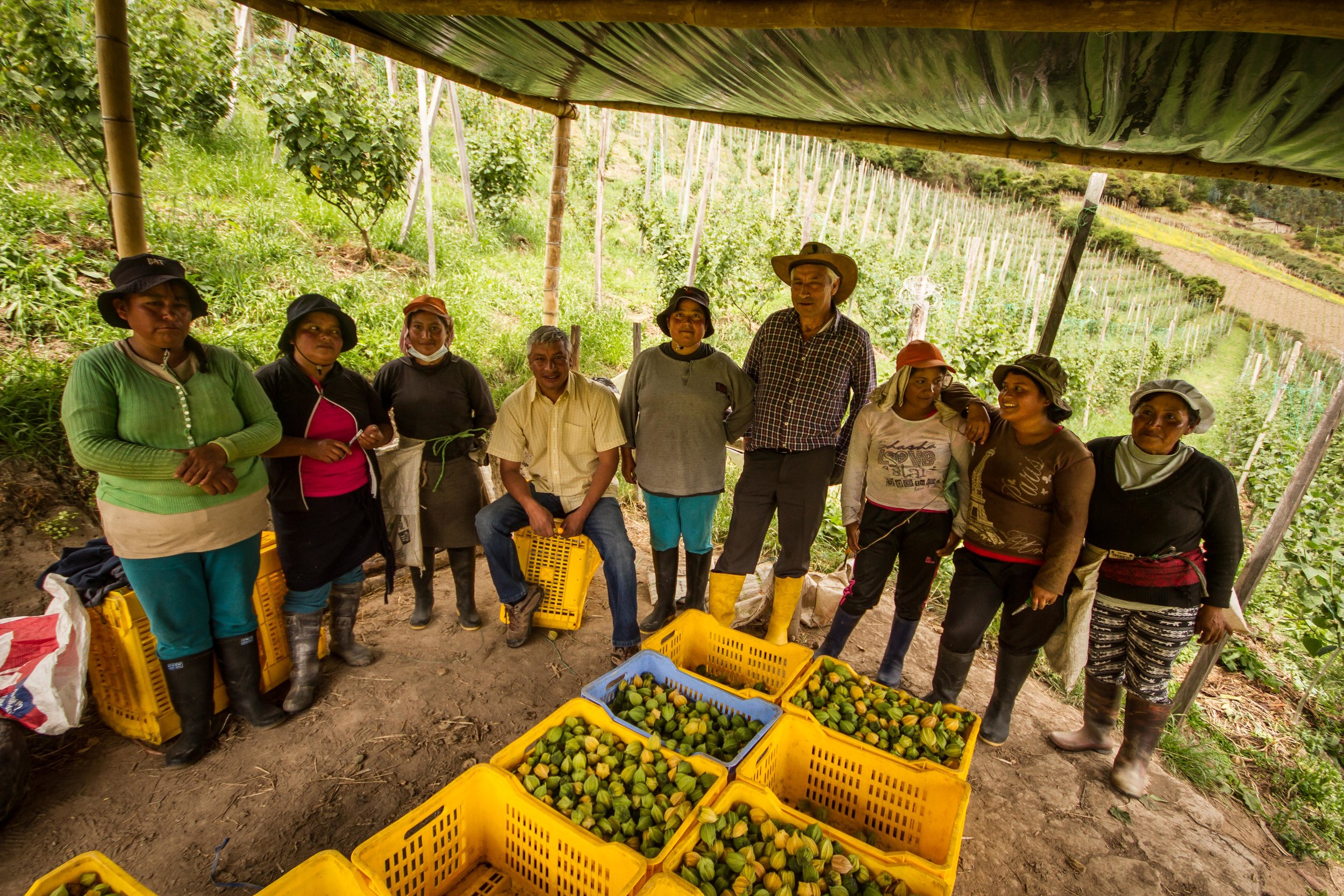 Albiero (centre left) and his father (centre right) along with the women who work on Albiero's farm.