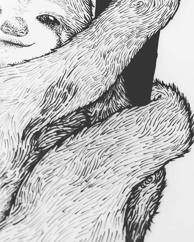 💤 - ➰ It's all in the details ➰ - #art #drawing #inkdrawing #artistoninstagram #ATLartist #pointillism #stippling #linedrawing #blackandwhiteart #pen #penandink #dotworkers #dotwork #linework #sloth #slothdrawing - © Rafaella Studart, 2019