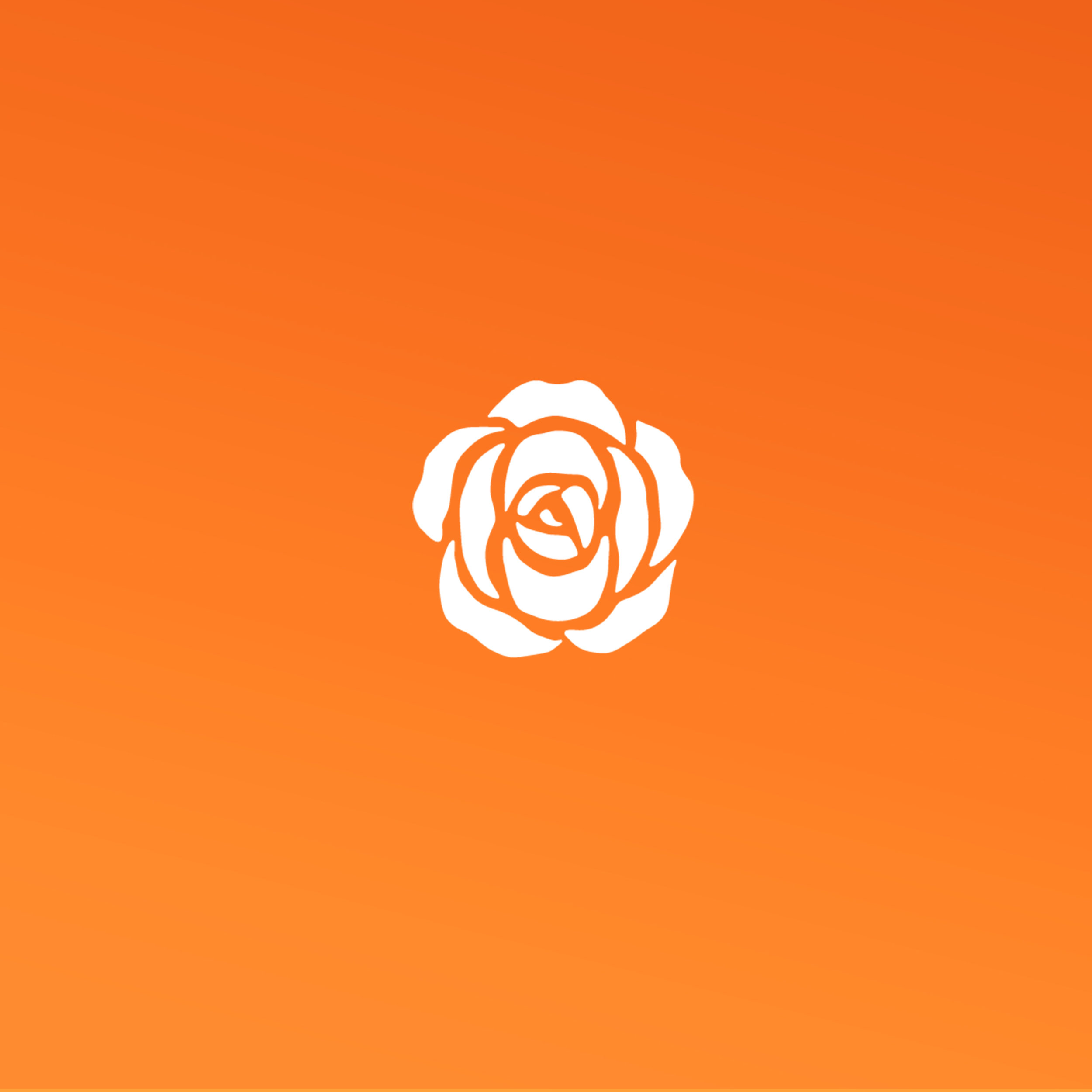 White-on-Orange-SQUARE.jpg