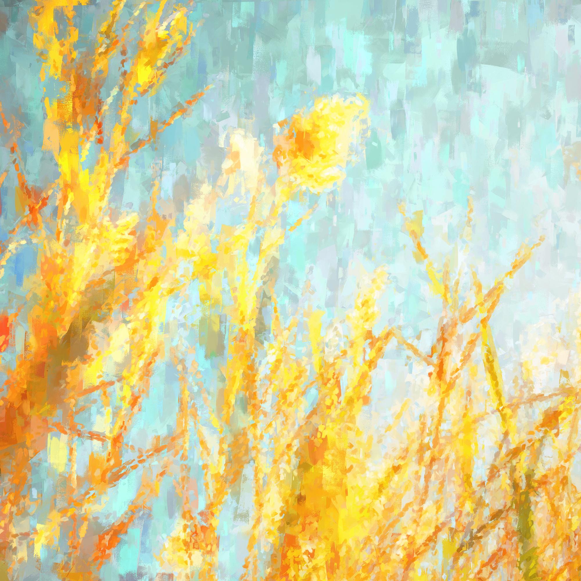 Sunlight through grass web.jpg