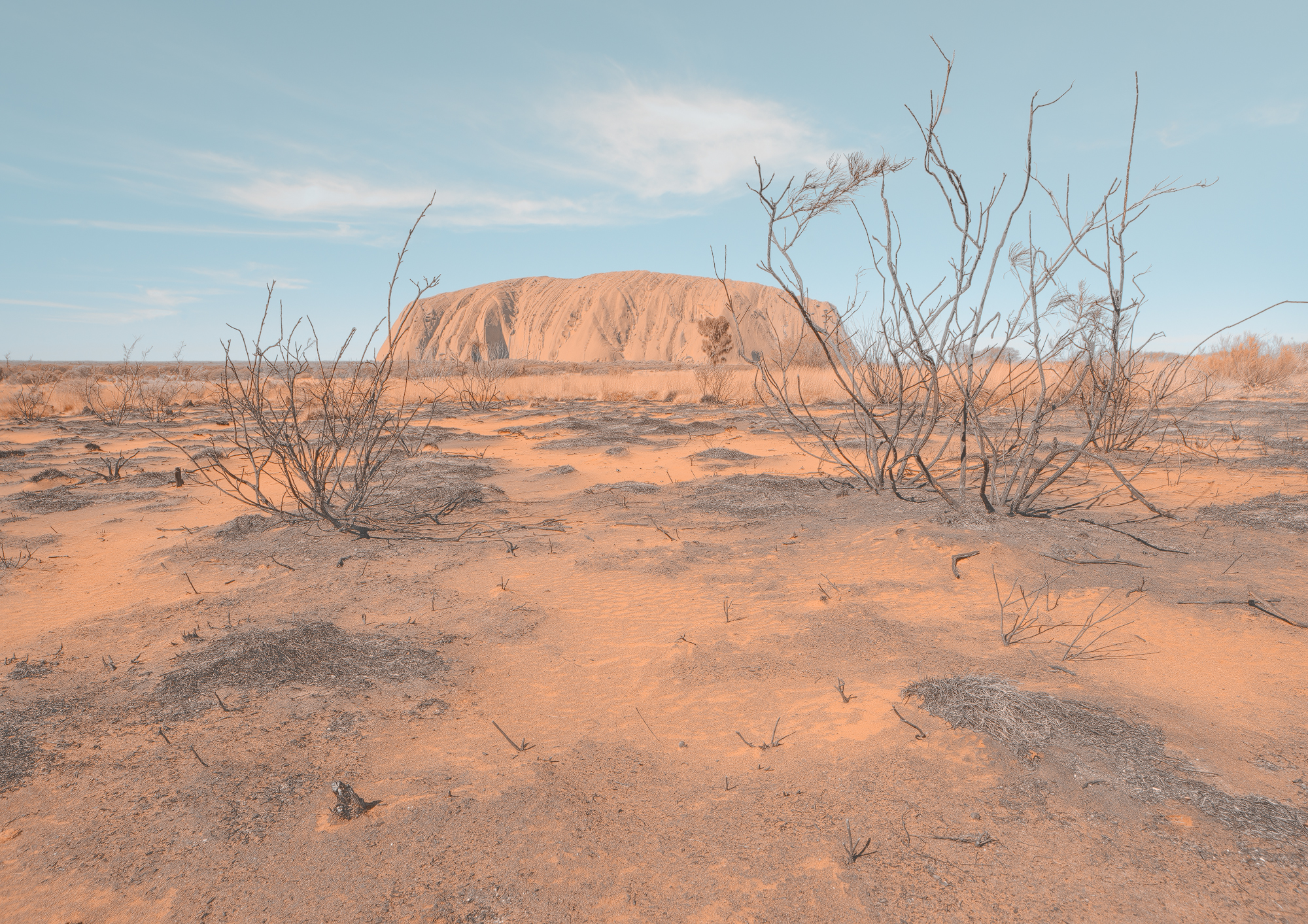 Uluru Whispers web.jpg
