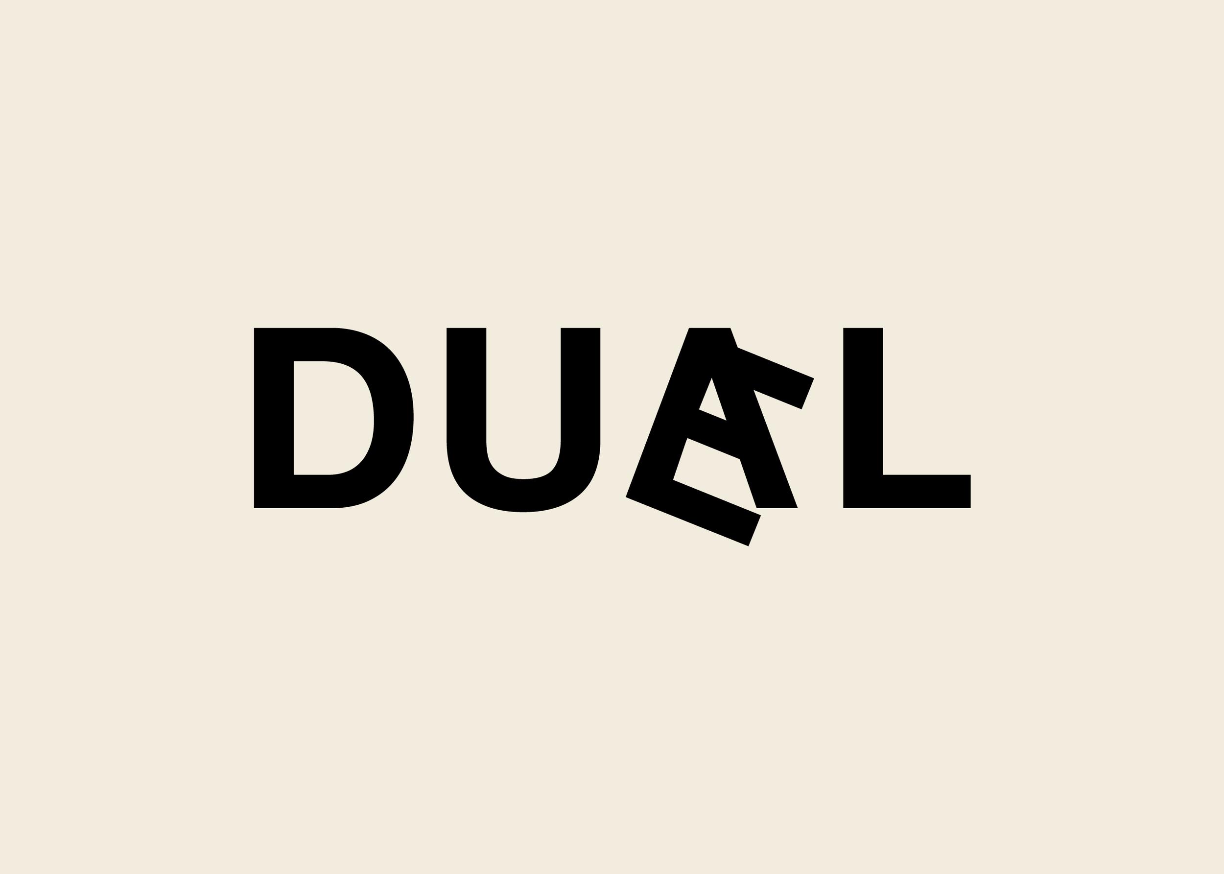 duael_flip2.png