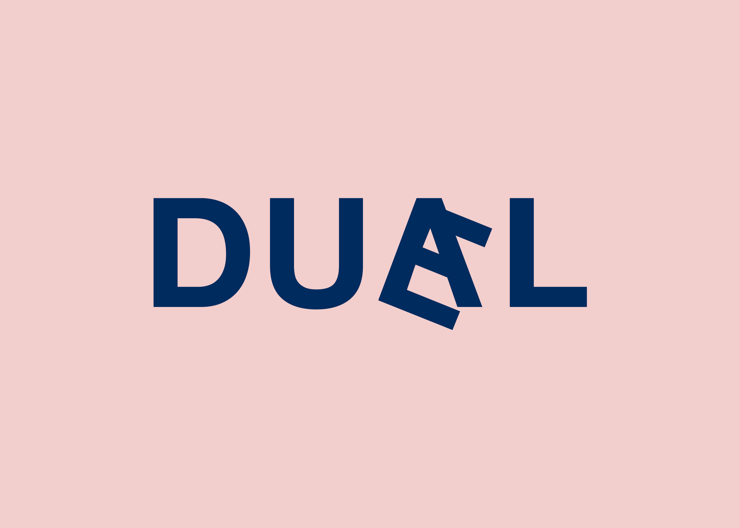 duael_flip11.png