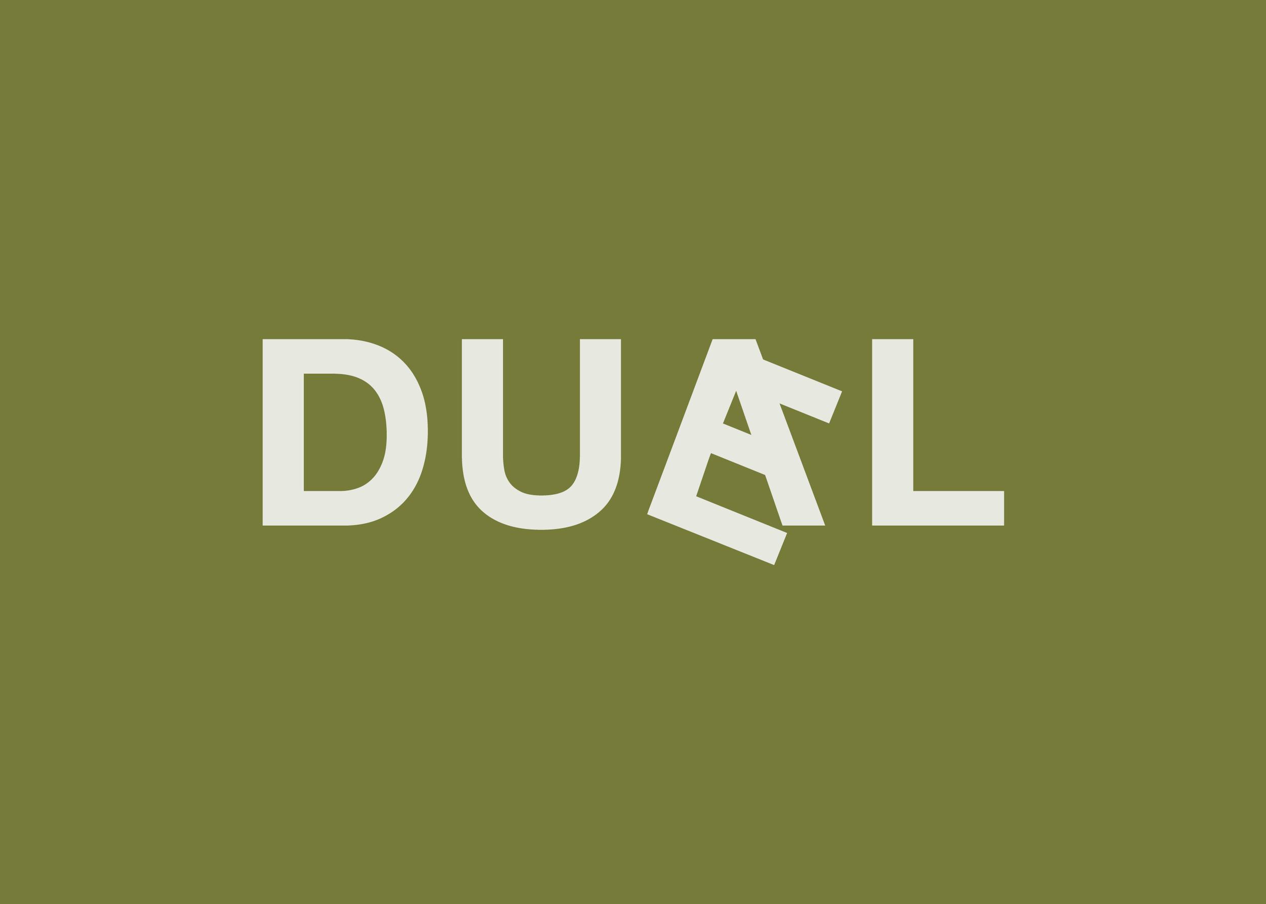 duael_flip12.png