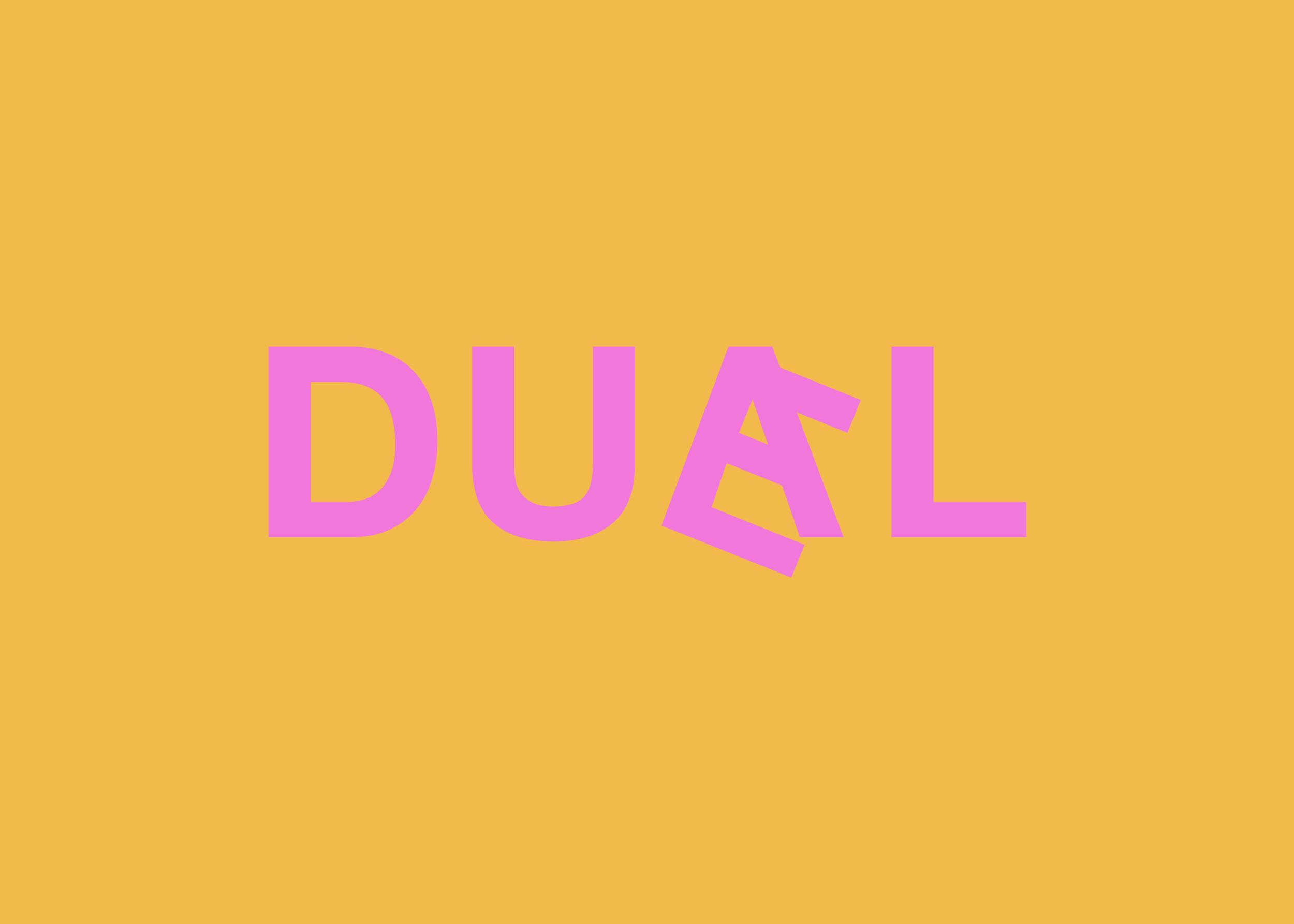 duael_flip16.png