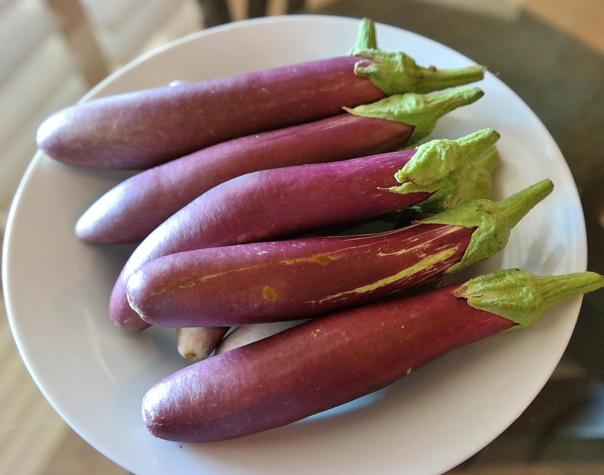 ping-tung-eggplant