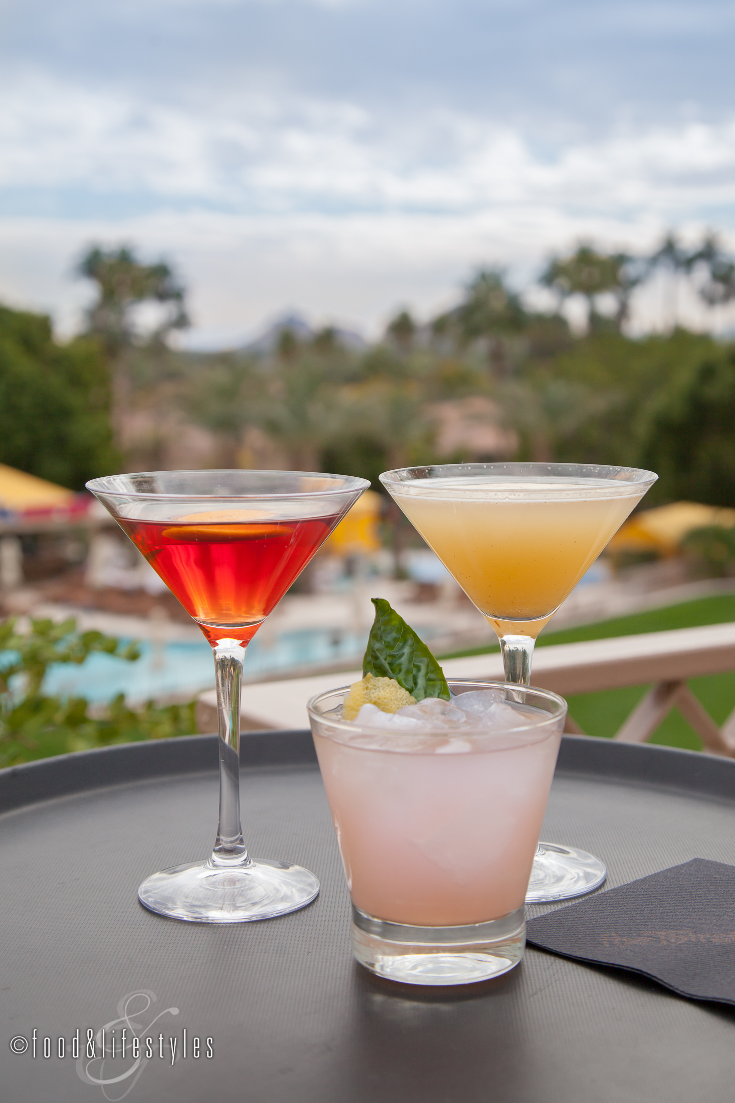 Thirsty camel cocktails