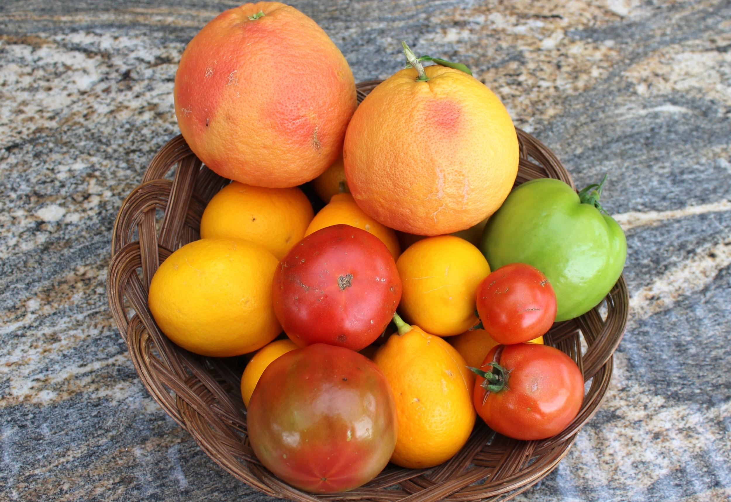 Arizona Rio Red grapefruit Meyer lemons tomatoes