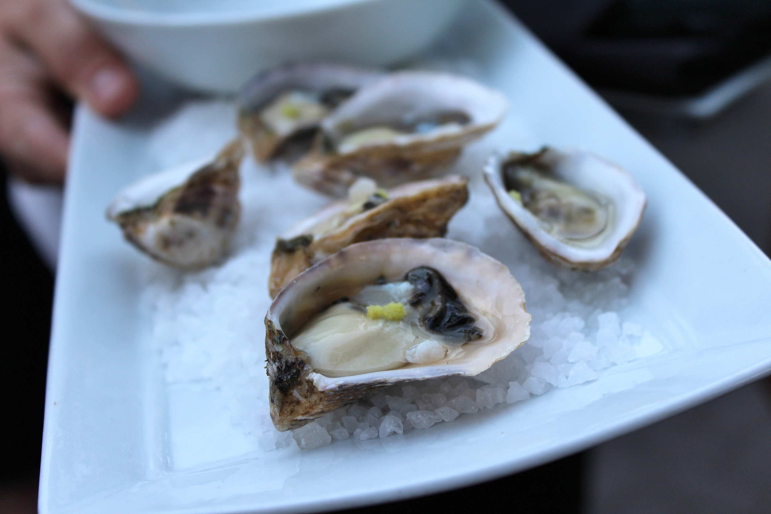 Kusshi oysters with ponzu and fresh wasabi