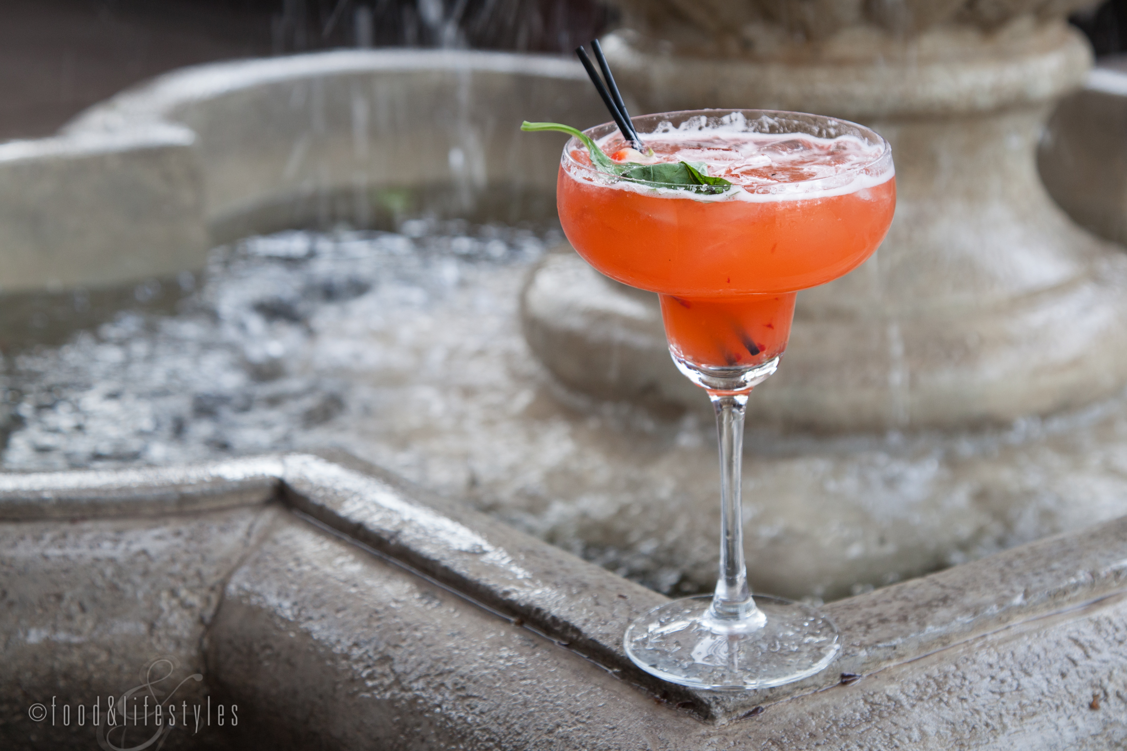 Strawberry-Basil margarita  (all photos by Jenelle Bonifield of  Food & Lifestyles )