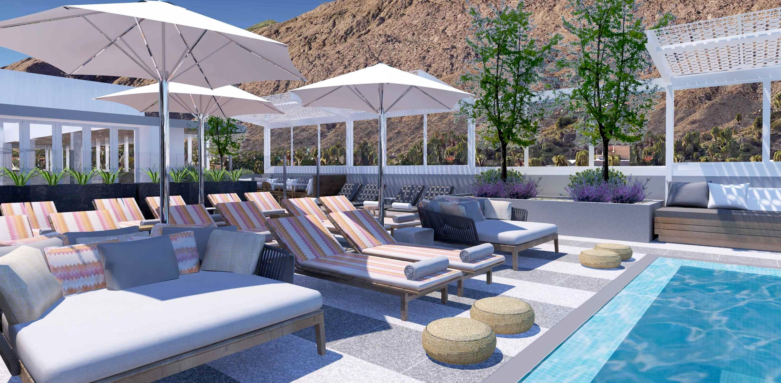 Rooftop pool Rowan Palm Springs