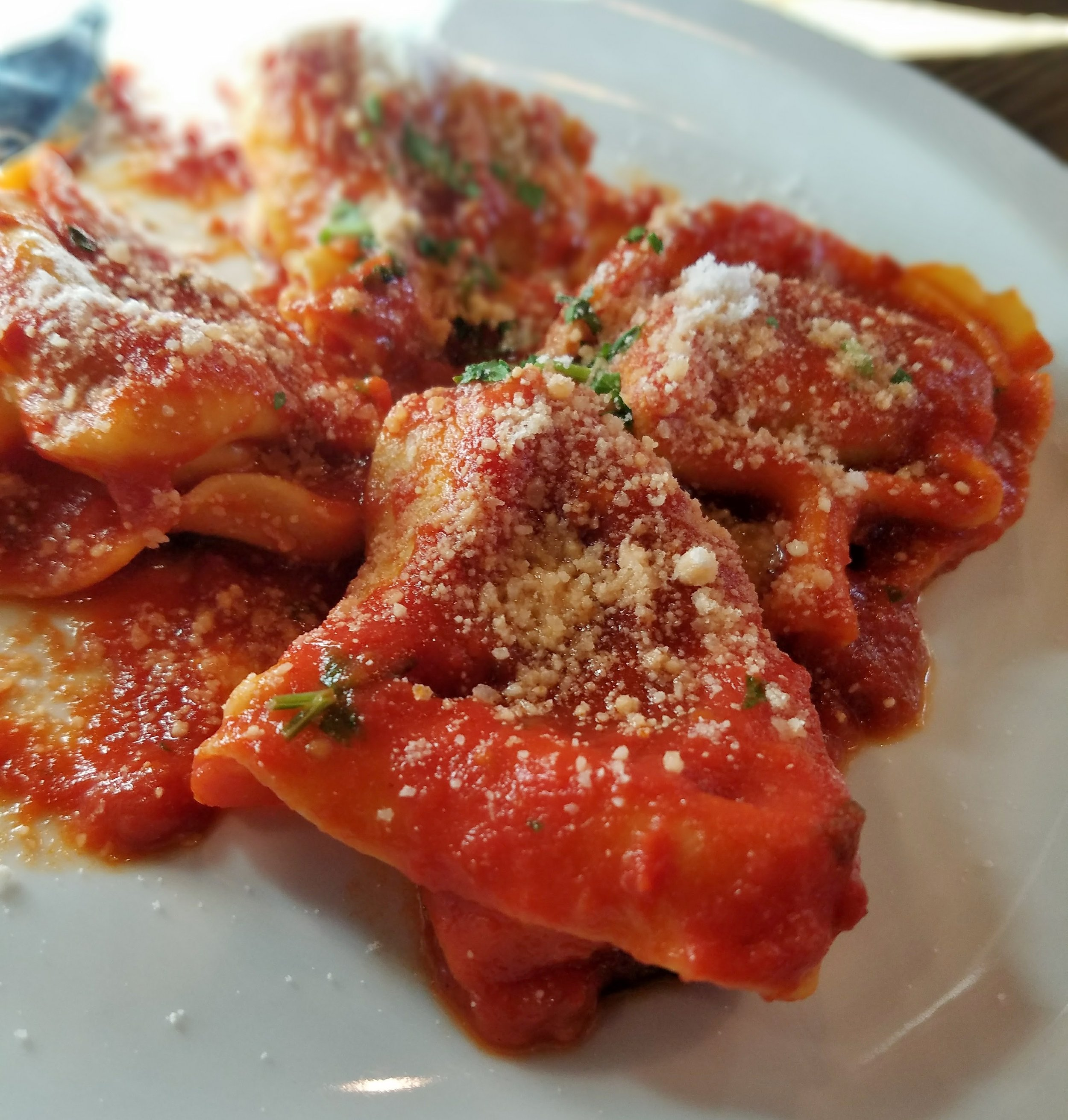 Veal and beef ravioli with marinara (a special)