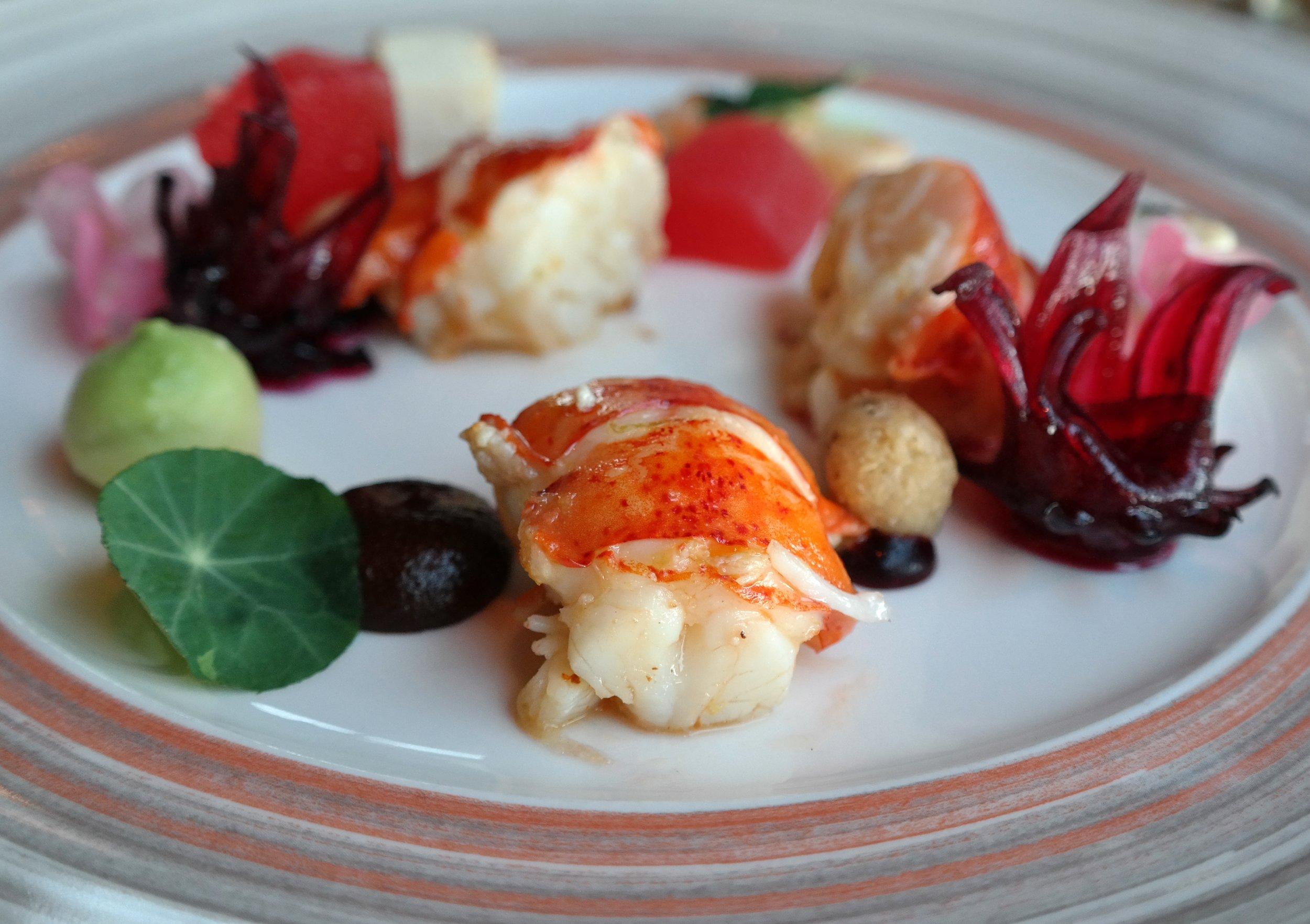 lobster hibiscus samantha sanz