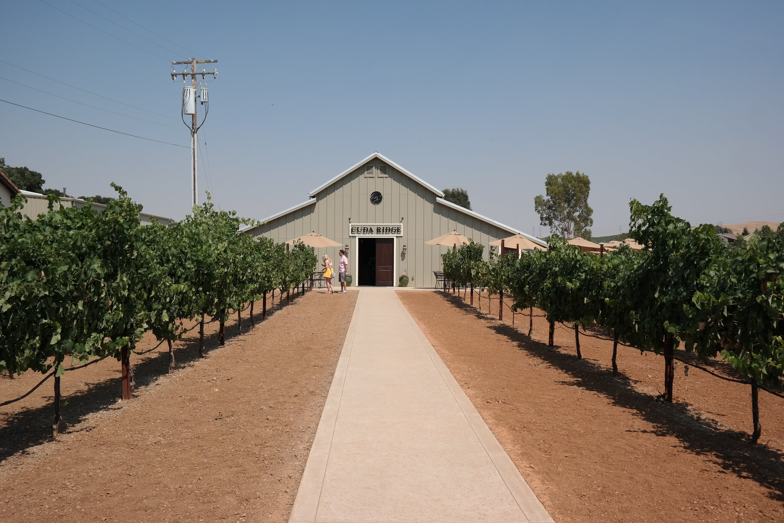 Cuda Ridge Wines Tasting Room