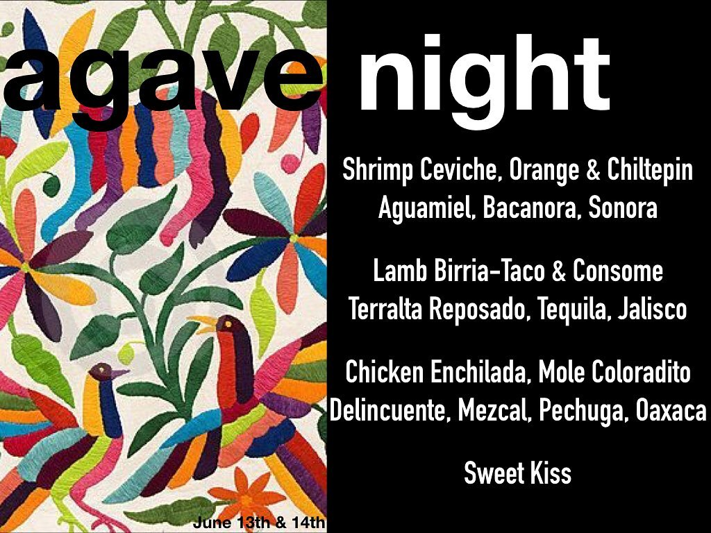 agave night.jpg