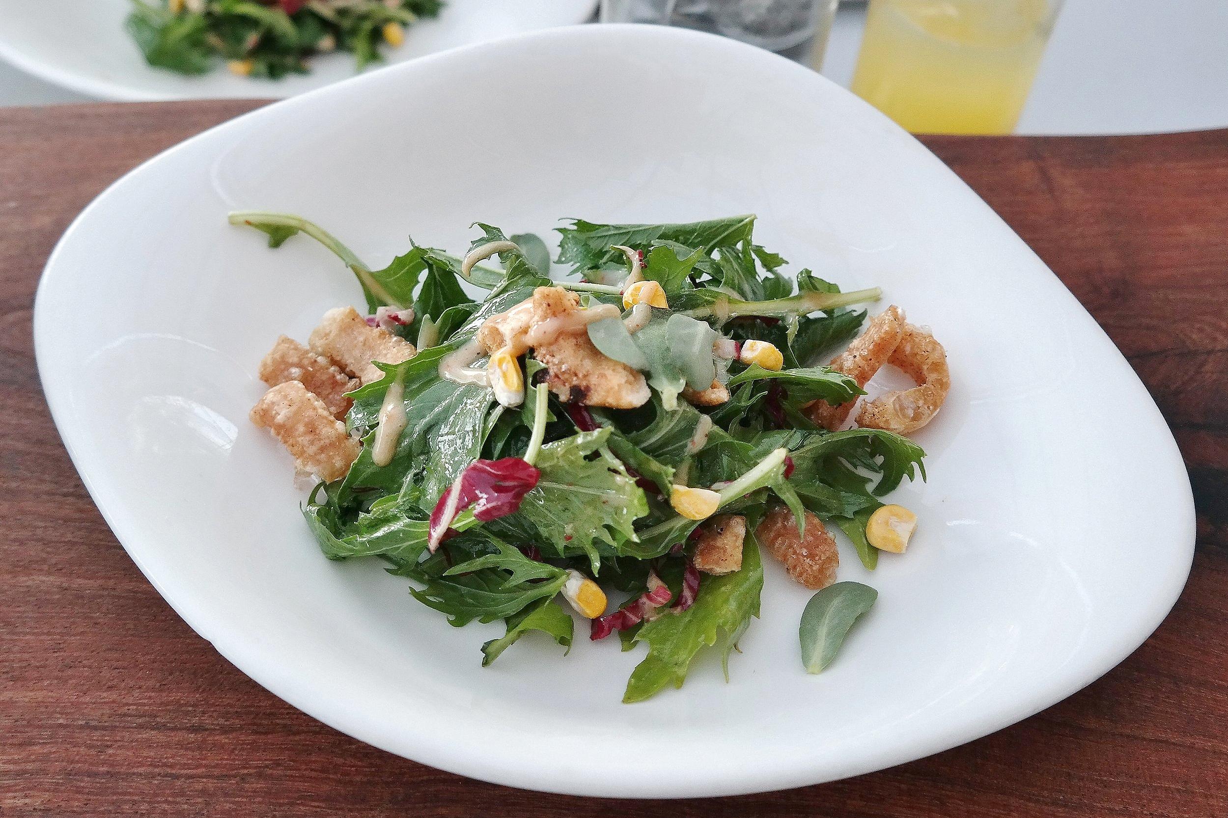 Tucson+23+chef+dinner+salad