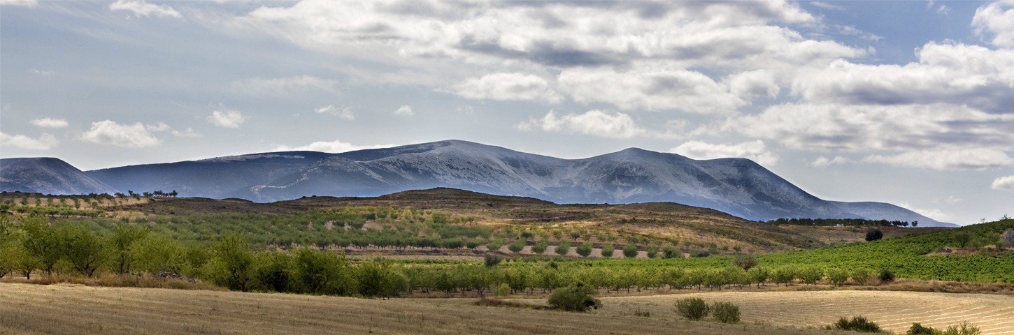 image courtesy of www.wineroutesofspain.com