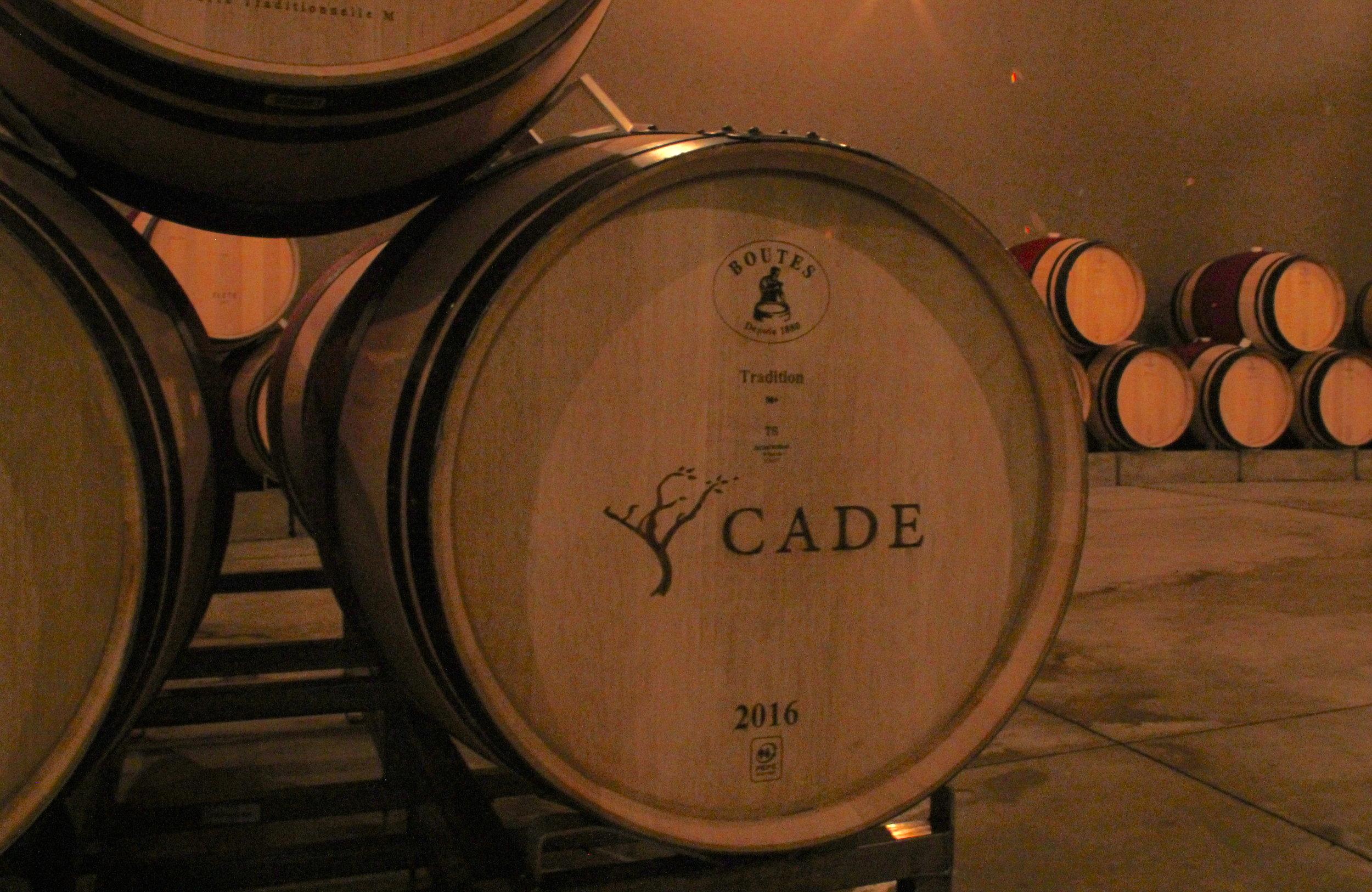 inside the Cade wine cellar