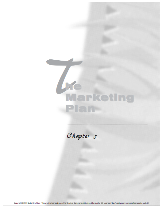 The Marketing Plan Chapter 5.png