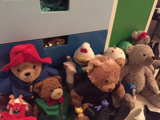 From L to R: Trigon, Paddington, Kuma, Robot, Fluffington J. Bear ESQ, Chickens, Arctos, Arc. Non-Teddy Bears go to Teddy Bear school as well, it gives the program more diversity.