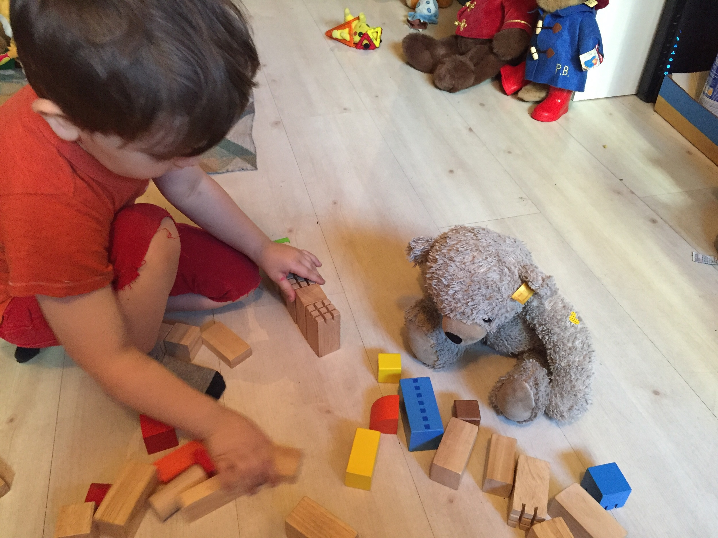 Arctics played with what was supposed to be Legos, but was actually a different kind of blocks