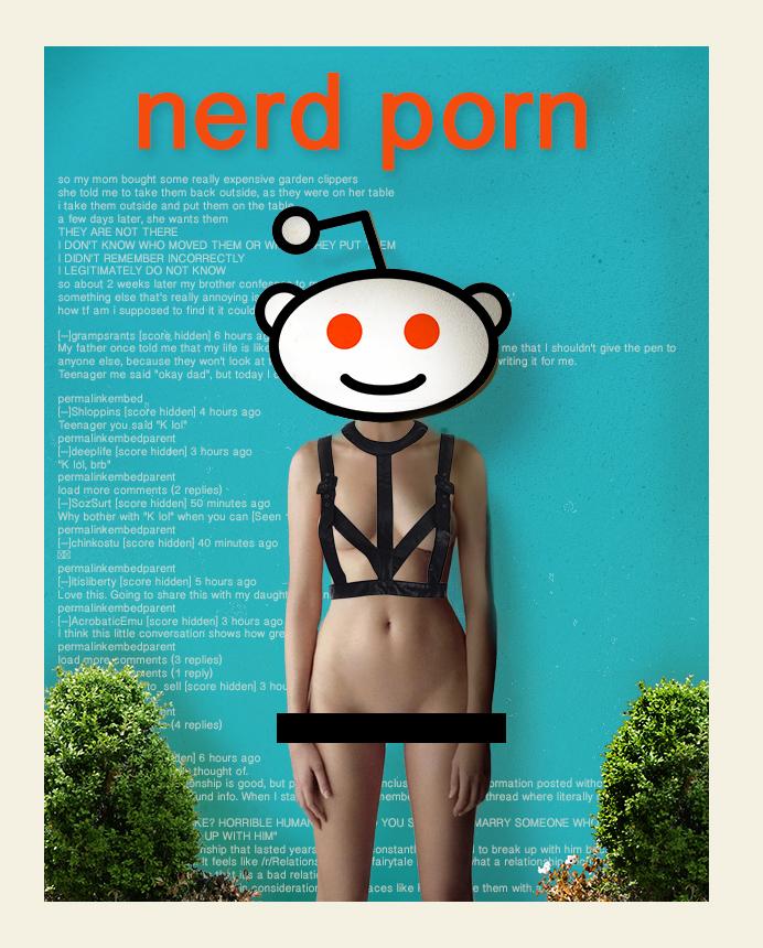 NERD_PORN.jpg