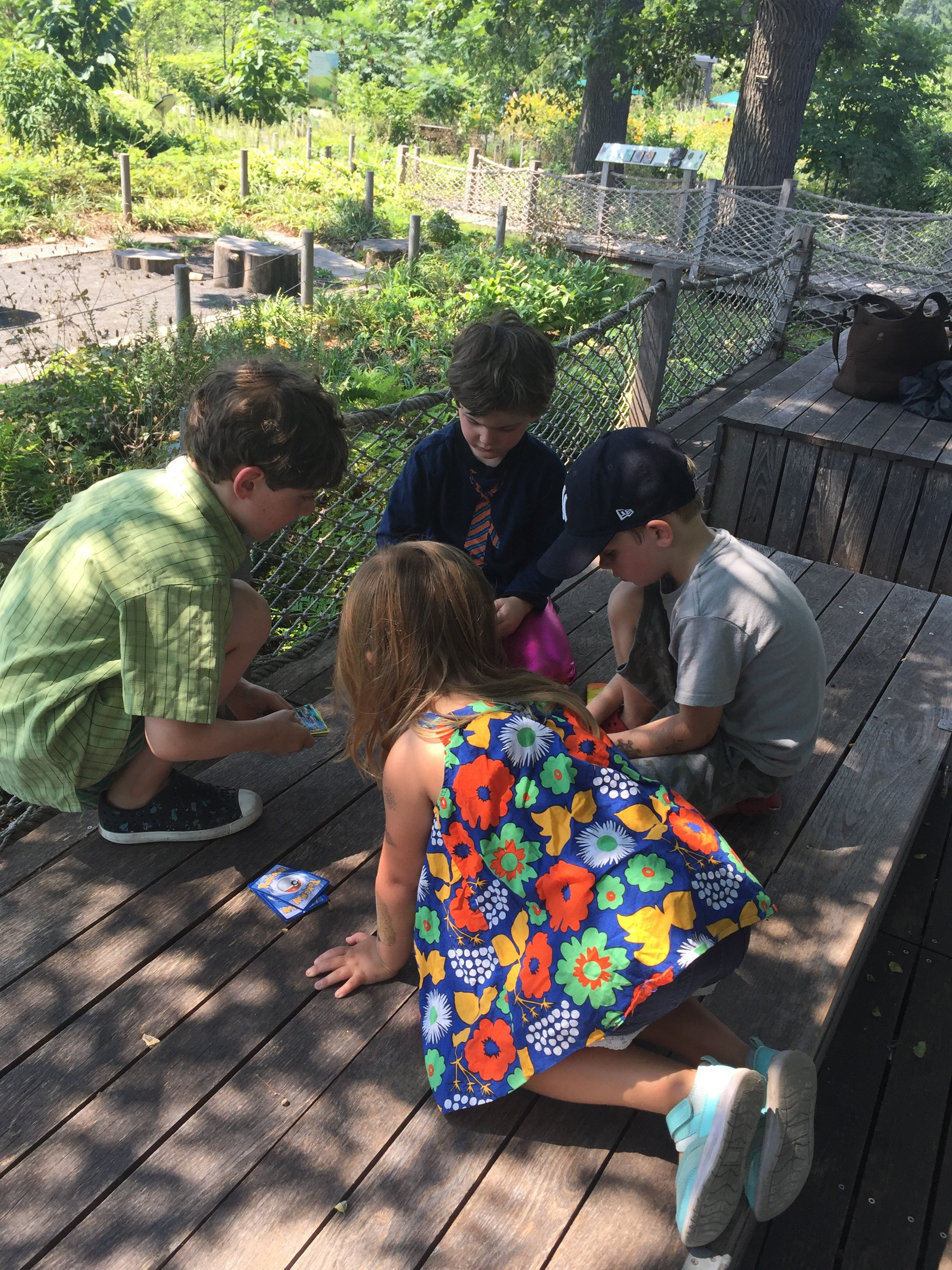 Pictured: kids ignoring nature in favor of Pokémon cards. ¯\_(ツ)_/¯