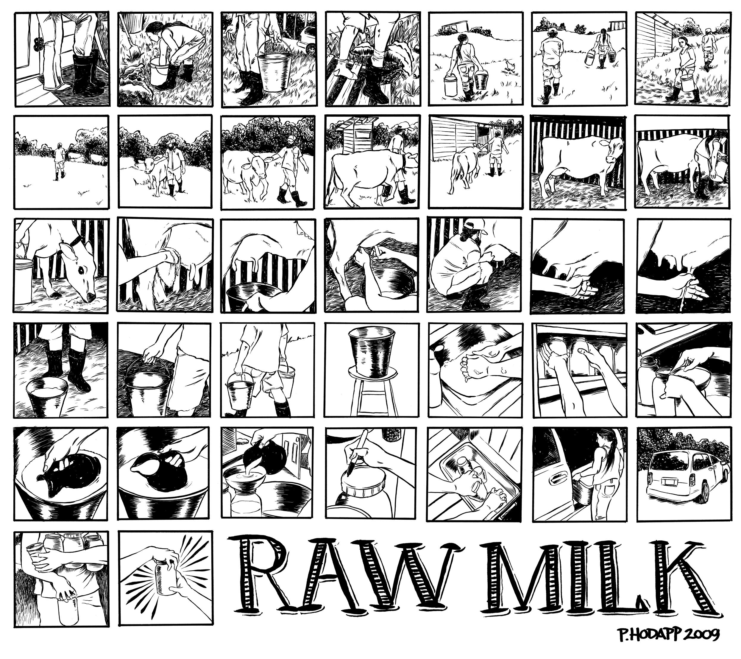 Raw Milk documentary comic.