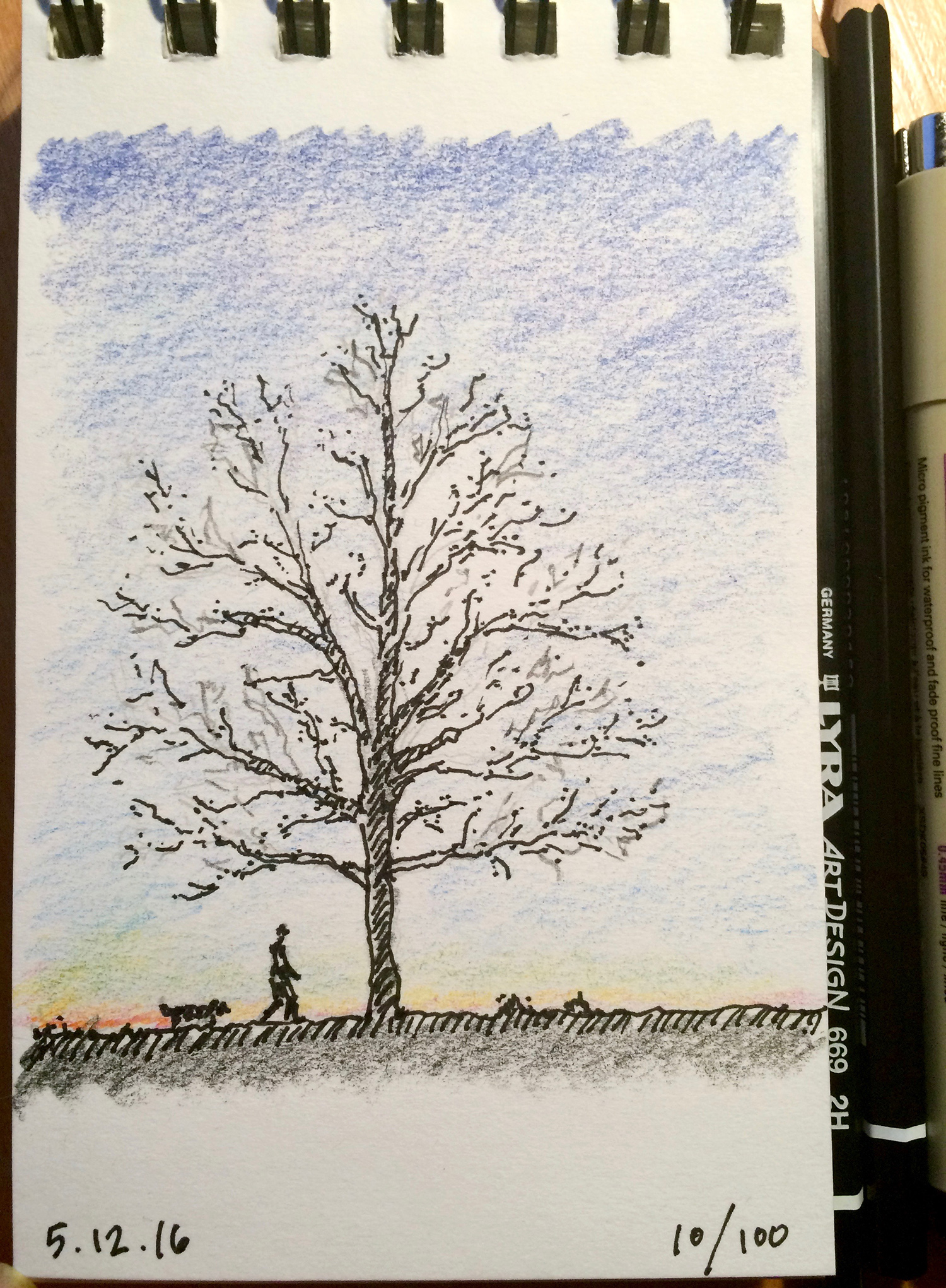 colored pencil and ink sketch, lonely tree and dog walk, by Jennifer Koskinen