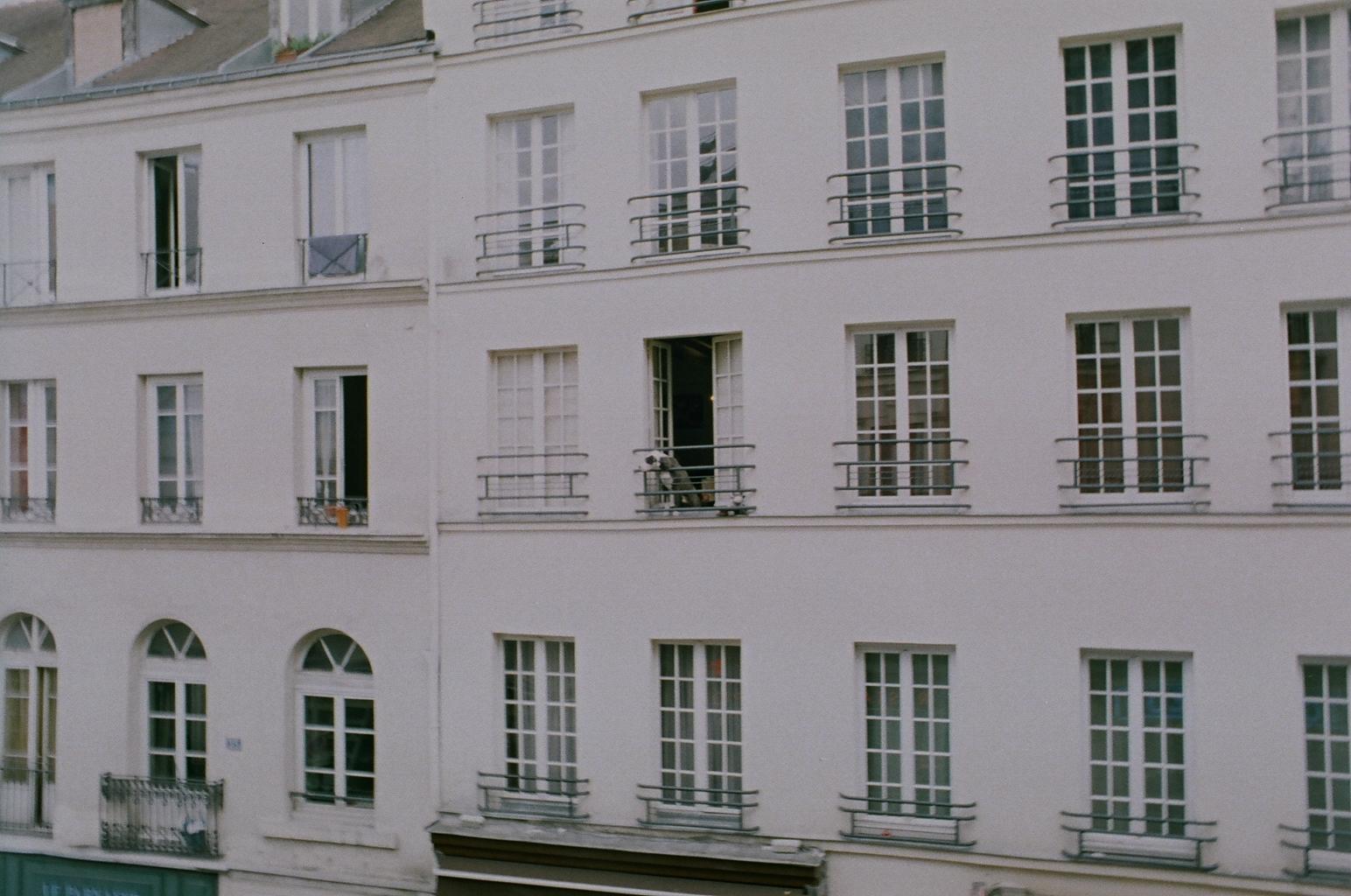 Big Dog. Little Apartment. (à la Parisienne)
