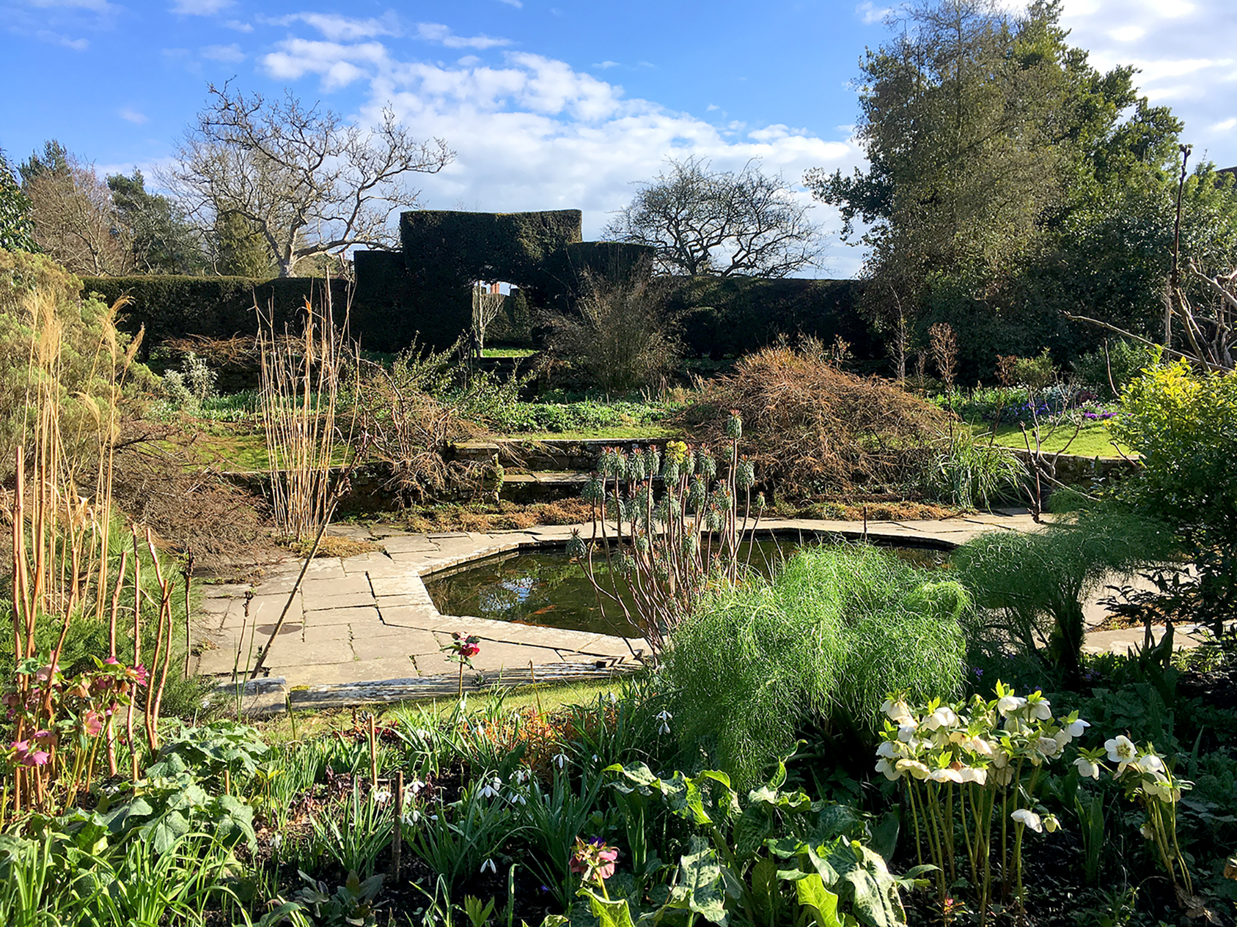Late Winter At Great Dixter Erika Packard