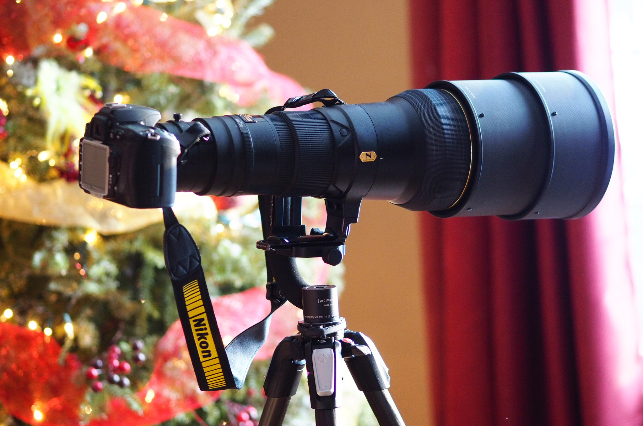 D300 + 600mm f/4 = 900mm of awesomeness.