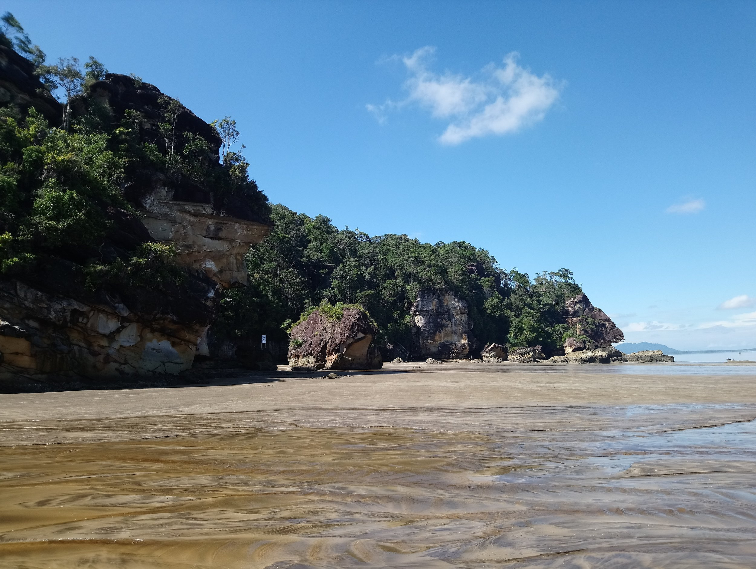 Seeing nature while it last, at Bako National Park.