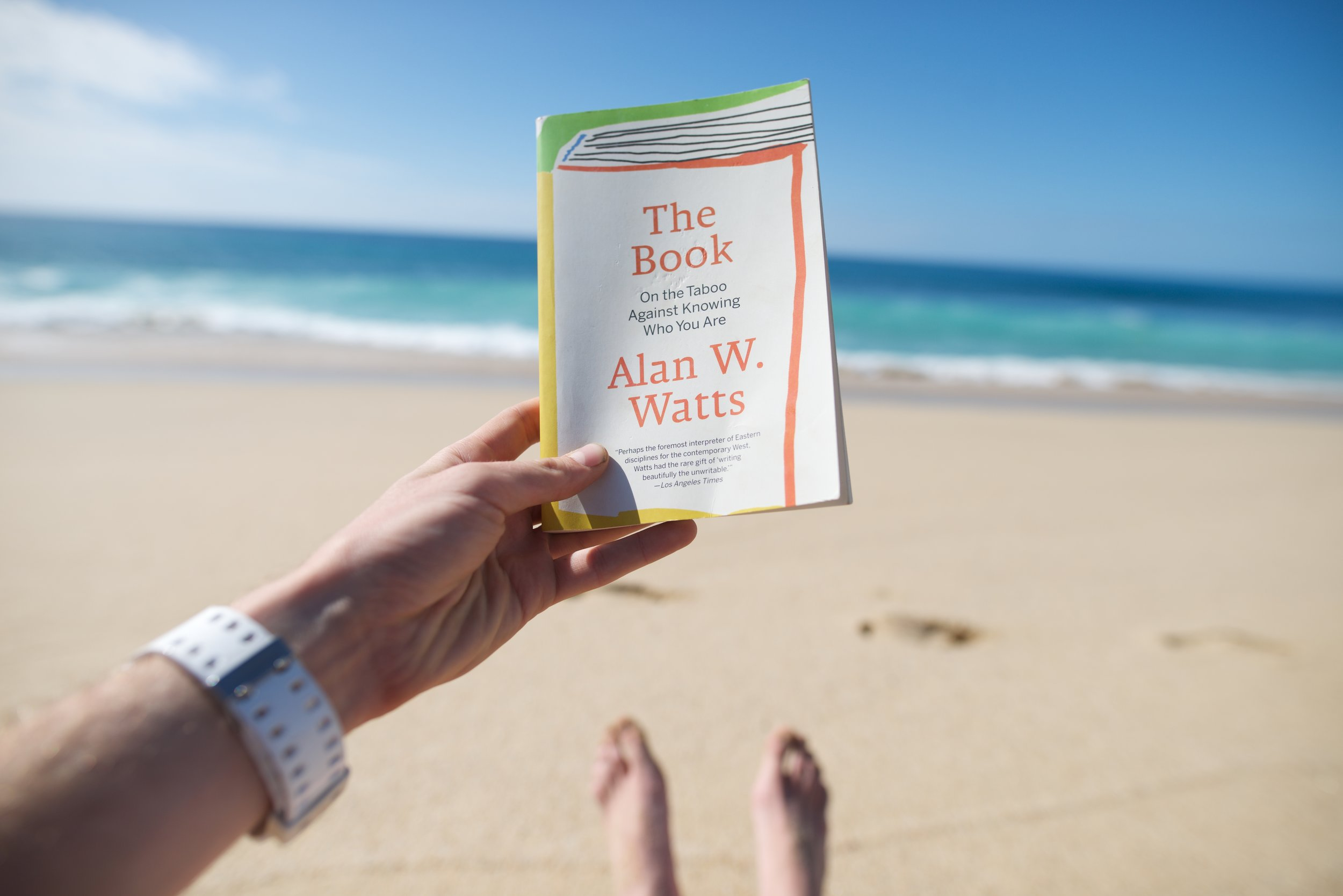 The Book on the taboo against Knowing Who You are  by Alan Watts. Definitely a must read.