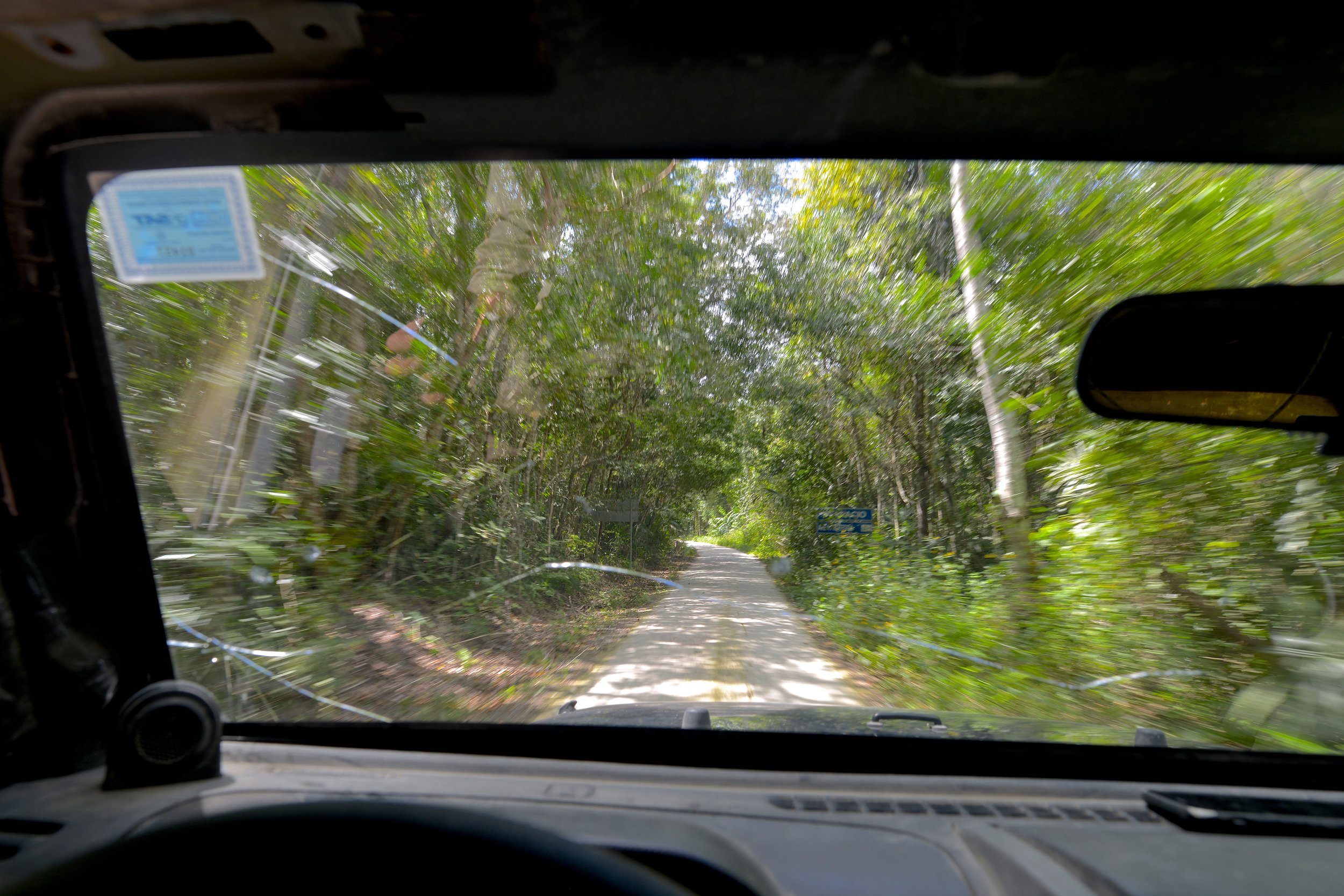 Visiting Tikal in Guatemala with a 4x4 is the best experience ever to see the fascinating pre-mayan ruins.