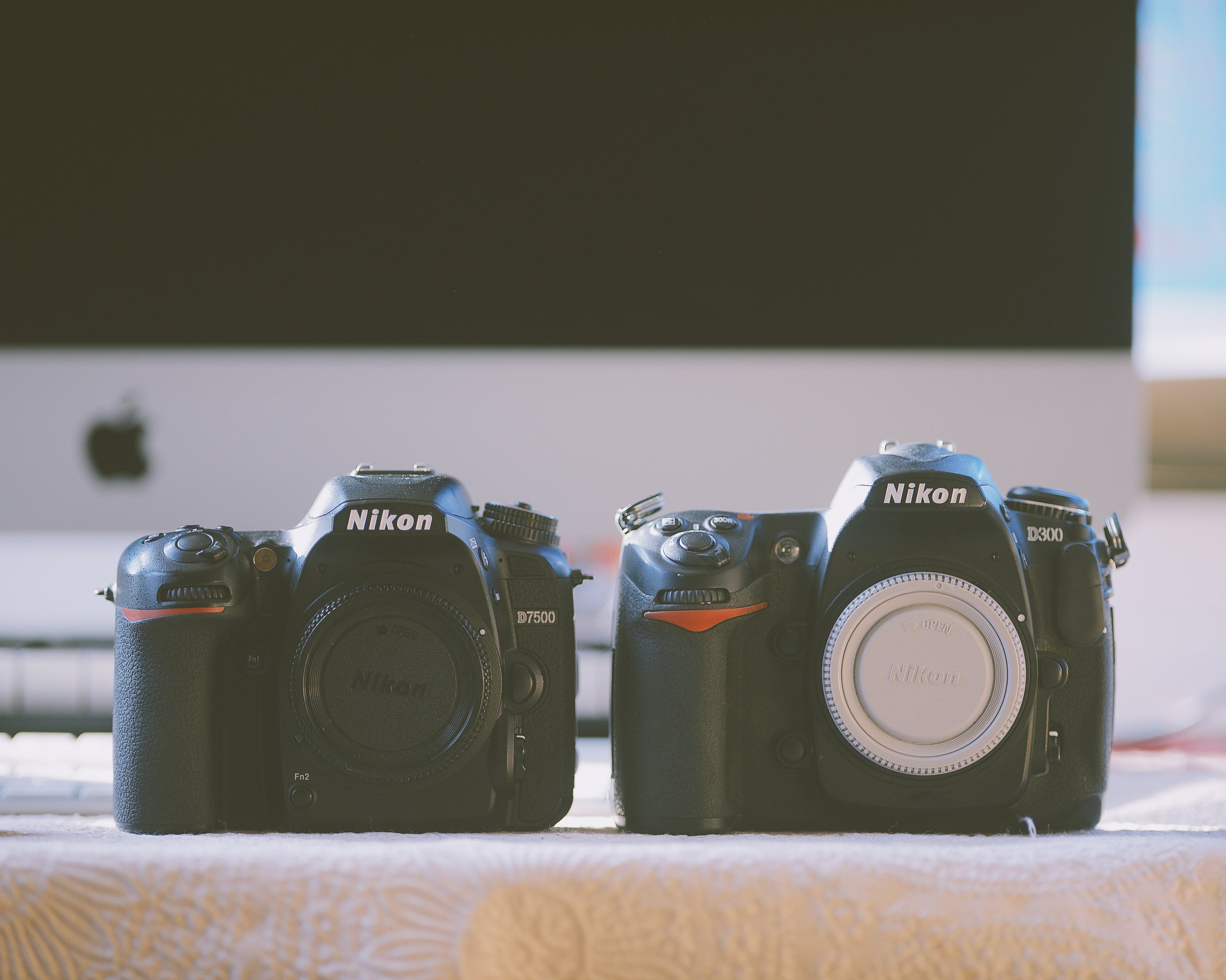 D7500 on the left, D7300 on the right.