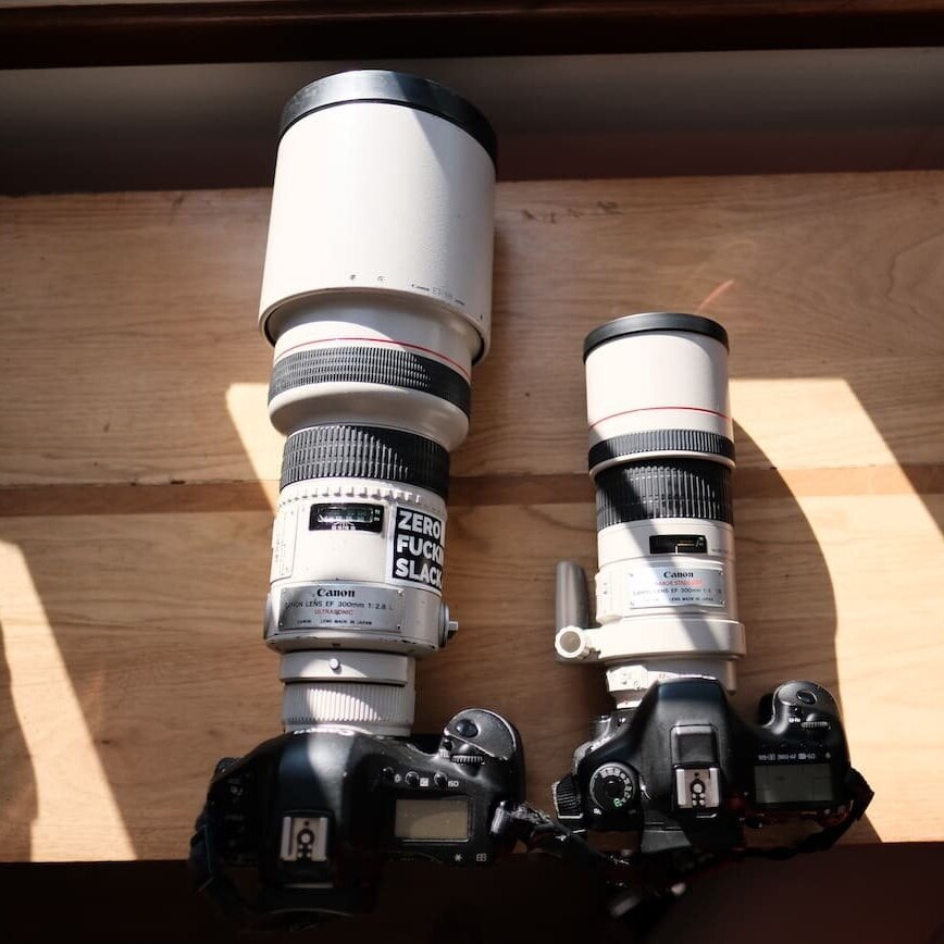 300mm F 4 Is Vs 300mm F 2 8 Usm Hands On Review The Most Beautiful World