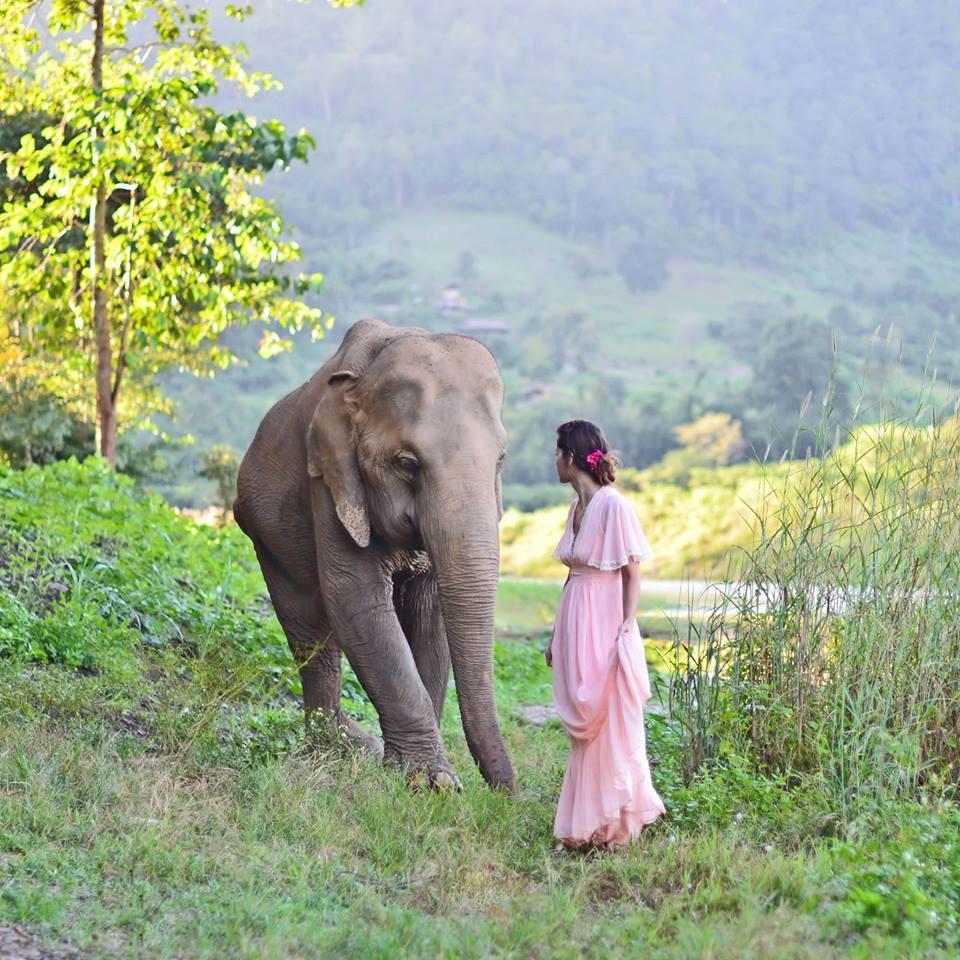 Photographer Jennifer Ilene's beautiful image taken at the Elephant Nature Park in Chiang Mai, Thailand.  Jennifer Ilene: http://on.fb.me/1OPYlWD Elephant Nature Park: http://on.fb.me/1HQH9AK