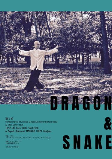 draagon &snake-3.jpg