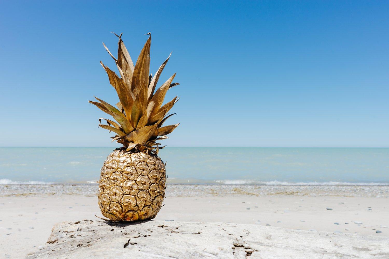 pineapple-supply-co-244487.jpg