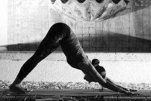 image source: yogisurprise.com