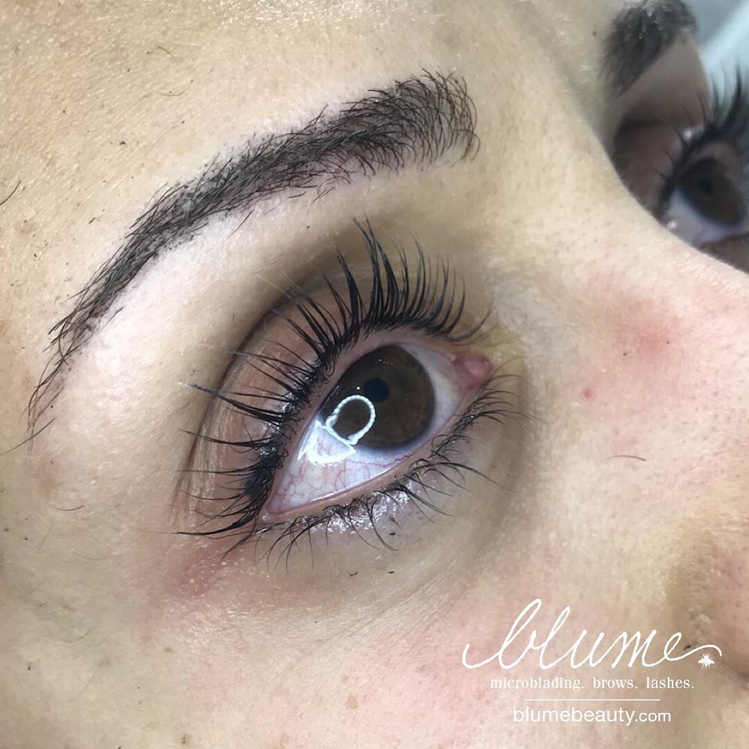 OMG Sexy Lash Lift : Lashes For The Stars