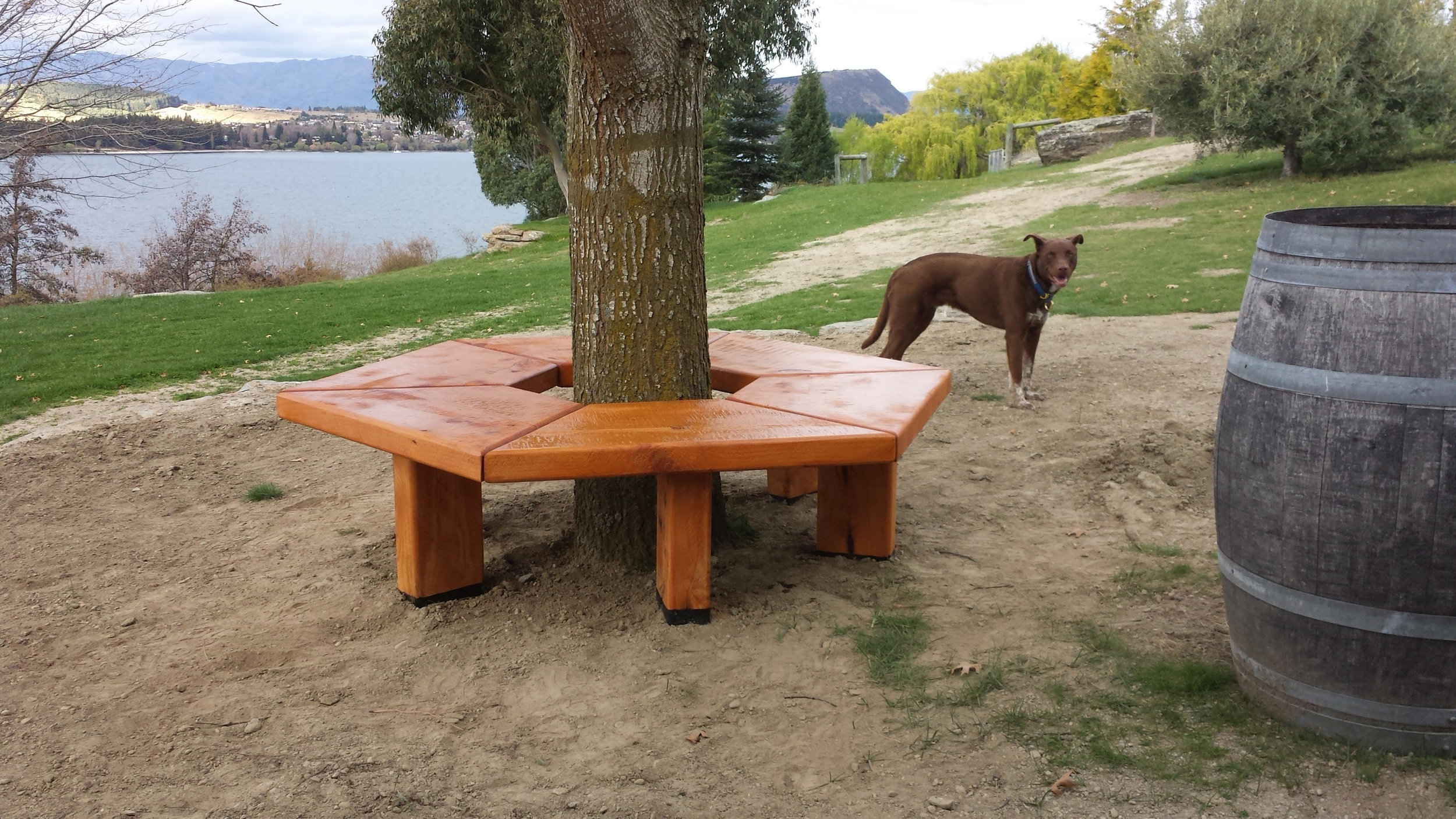 Custom bench.jpg