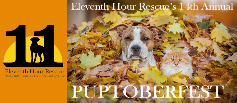 We are excited to share that we will be returning as vendor to Puptoberfest for the 3rd year in a row! This is a special event as a portion of our proceeds from the day go to benefit an amazing cause, The Eleventh Hour Animal Rescue.   Eleventh Hour Rescue is made up of dedicated individuals who believe that innocent pets deserve love and a place to live where they are honored and cared for. No dog or cat deserves to die simply because it does not have a home. EHR rescues dogs and cats at their Eleventh Hour--when they are scheduled to be put to death by shelters that can no longer care of them. They provide all the necessary medical care, a place to leave and a second change at a happy life.   We adopted our wonderful Columbo through Eleventh Hour and would like to give back to this great organization by offering a portion of our proceeds as a donation to this incredible organization.    Come for a fun filled day to celebrate and support this awesome organization and their adoptable dogs and cats.
