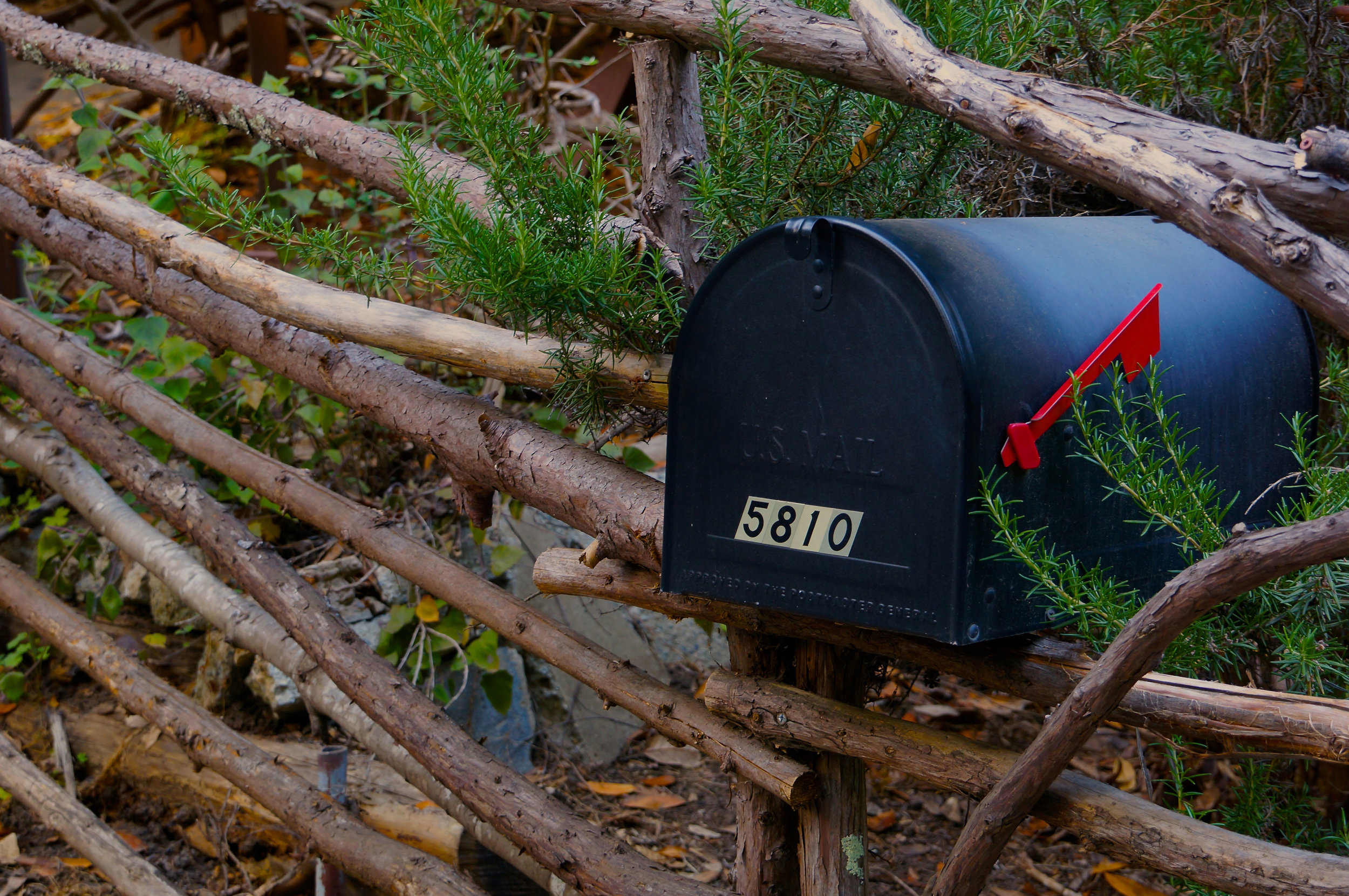 cho_mailbox_sm.jpg